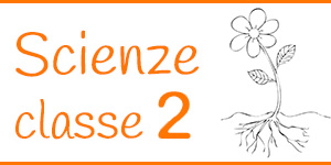 Scienze classe seconda
