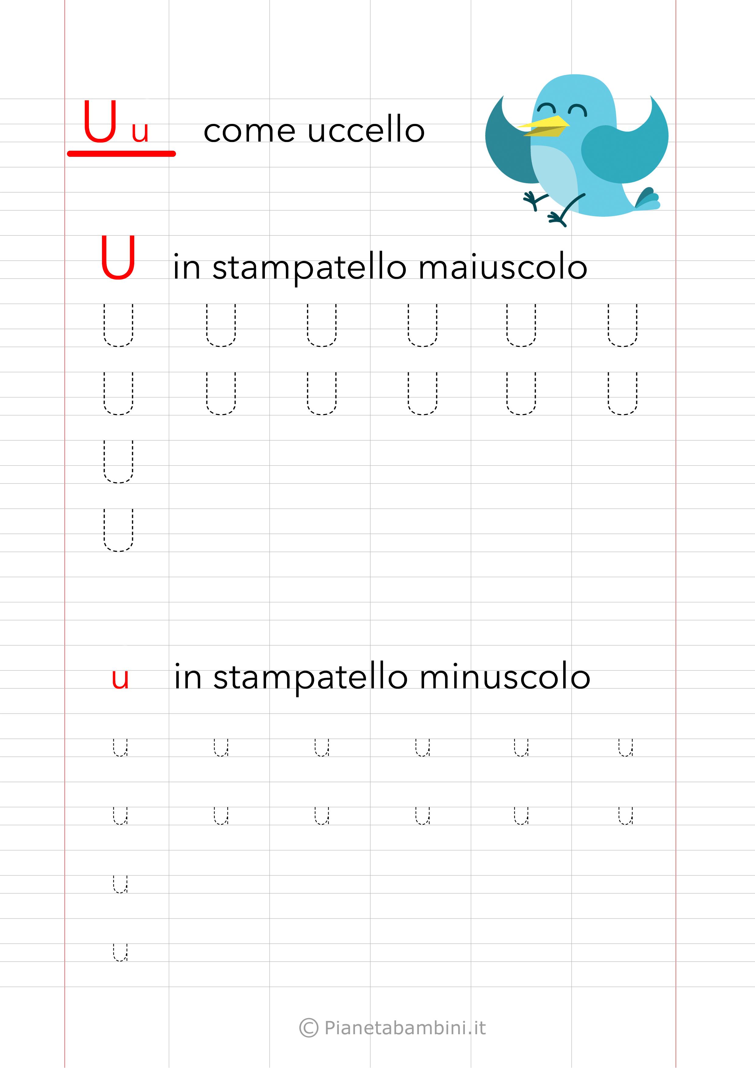 Schede Pregrafismo Vocale U Stampatello