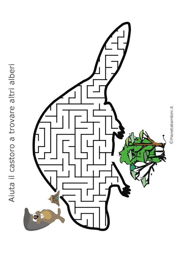 Labirinto a forma di castoro