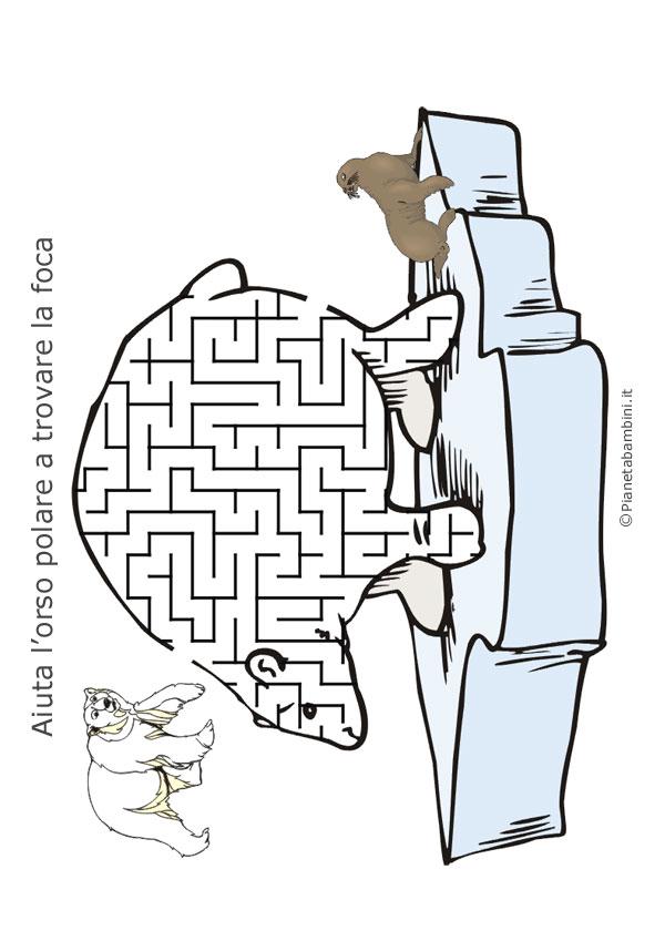 Labirinto-Orso-Polare