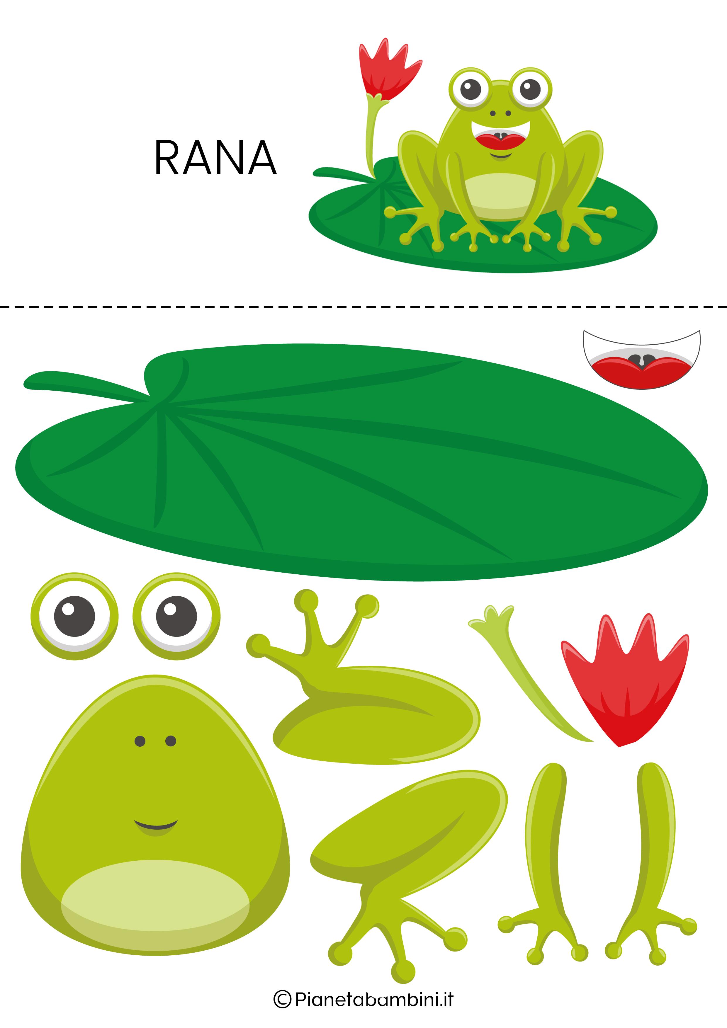 Puzzle da ritagliare e ricomporre sulla rana
