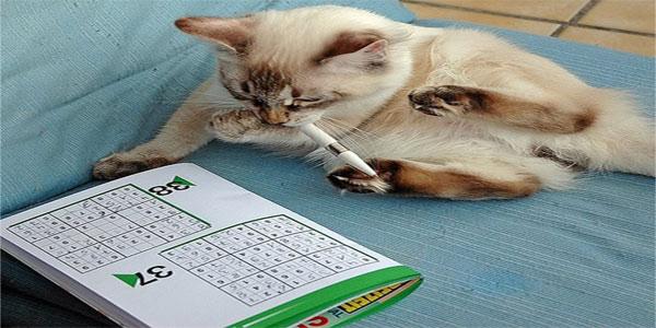 Sudoku per bambini da stampare gratis