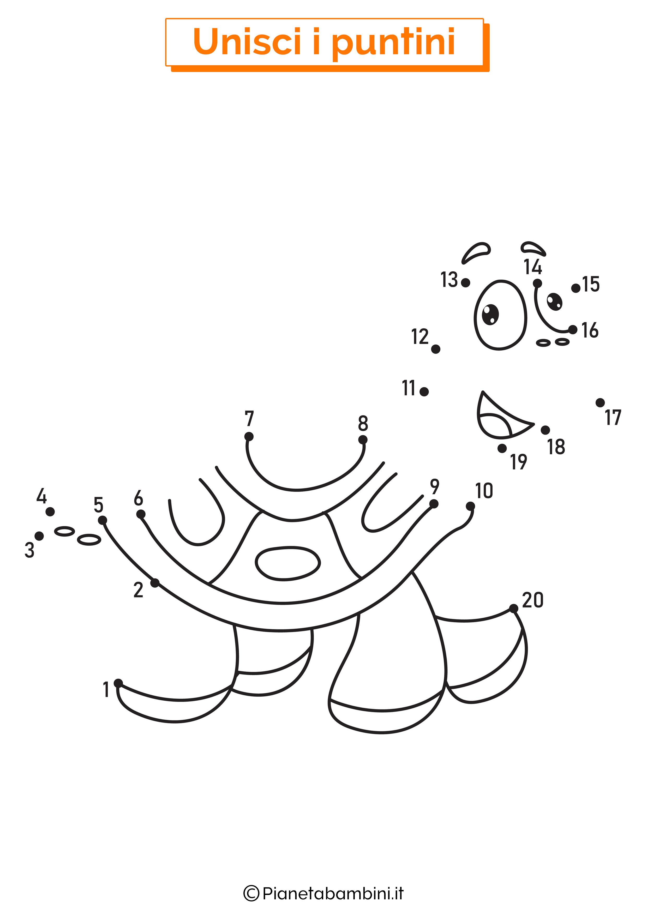 Disegno unisci i puntini tartaruga