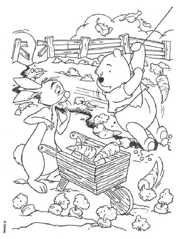 Disegni Di Winnie The Pooh Da Stampare E Colorare Pianetabambini It