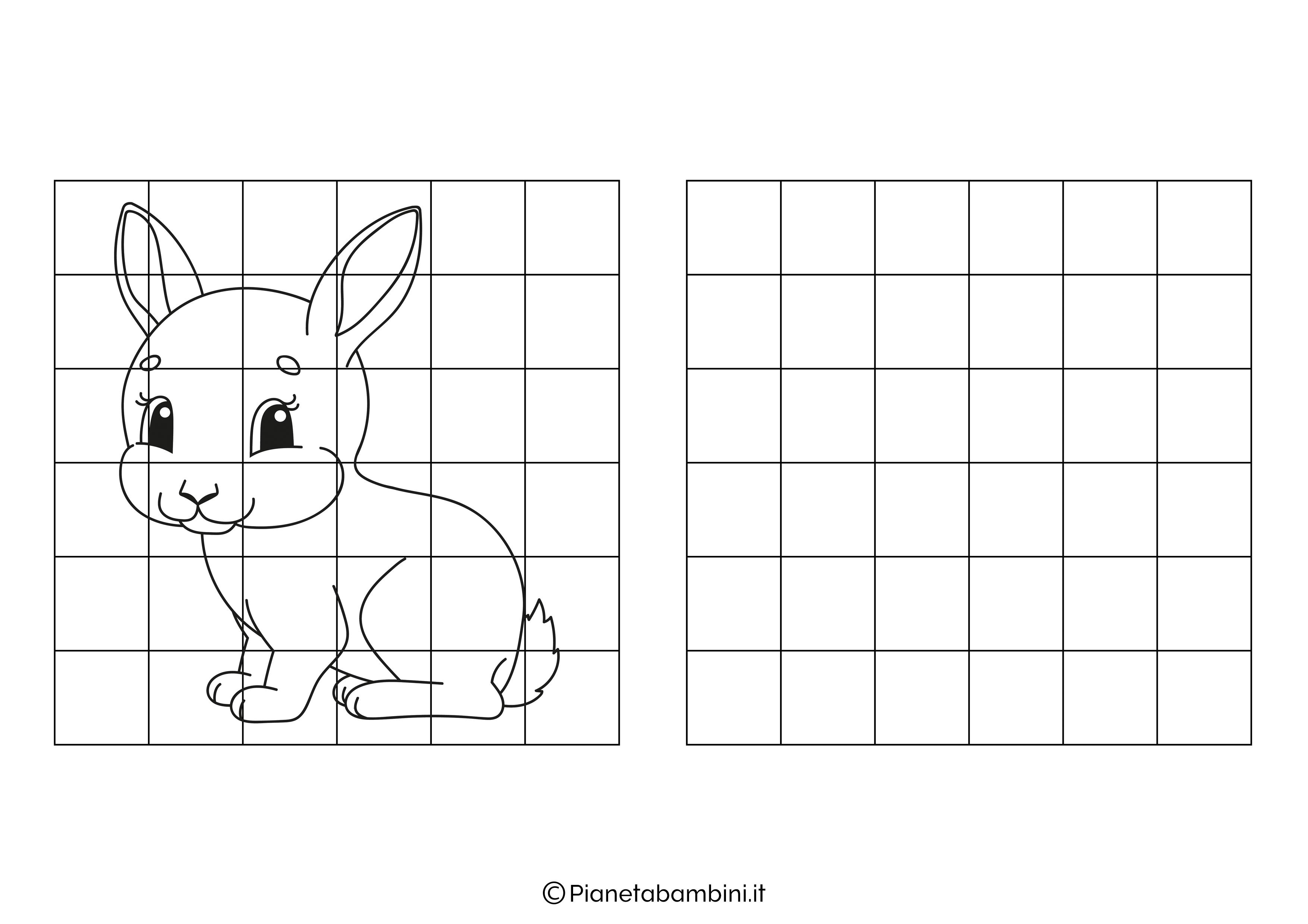 Coniglio da copiare
