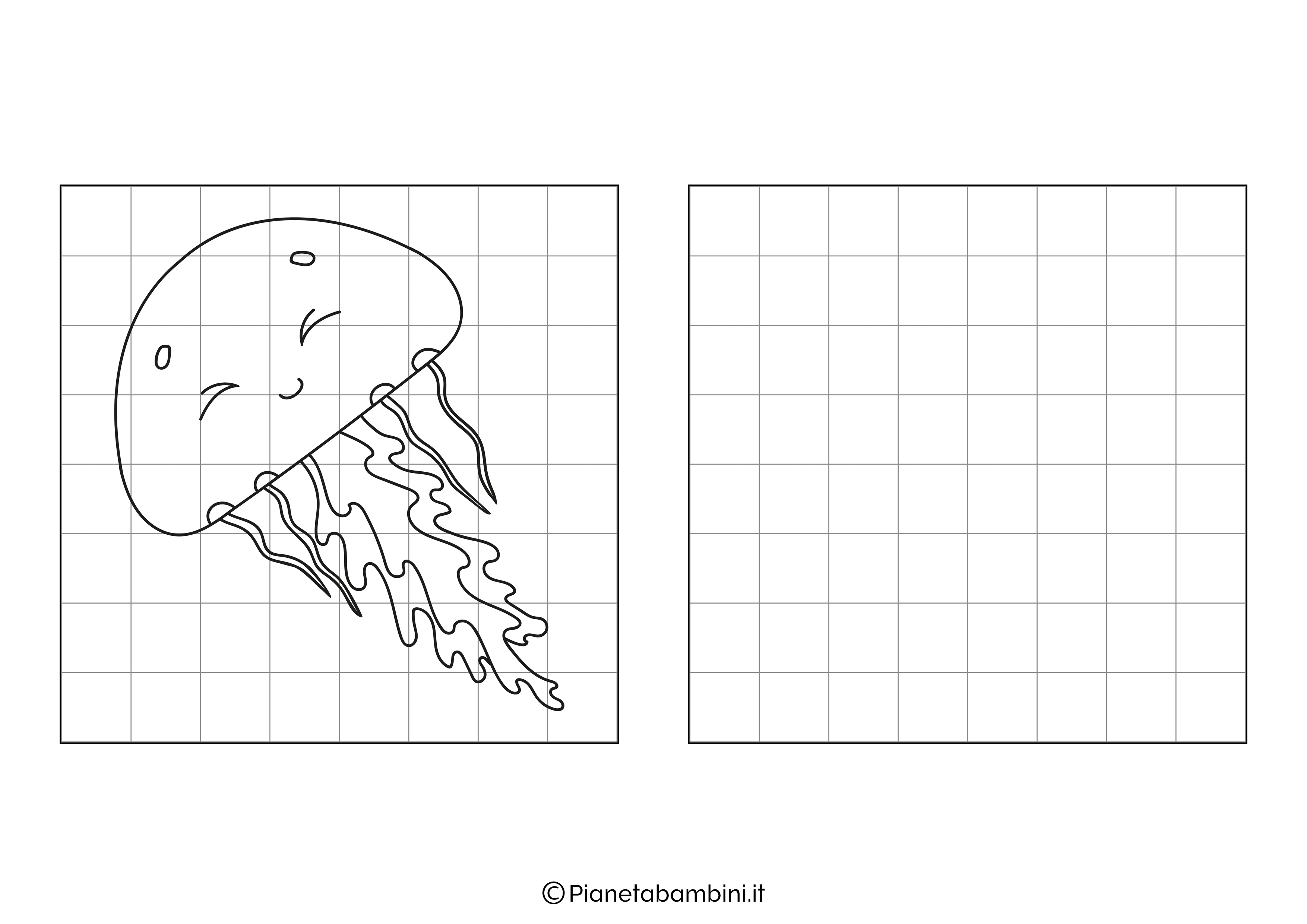 Medusa da copiare