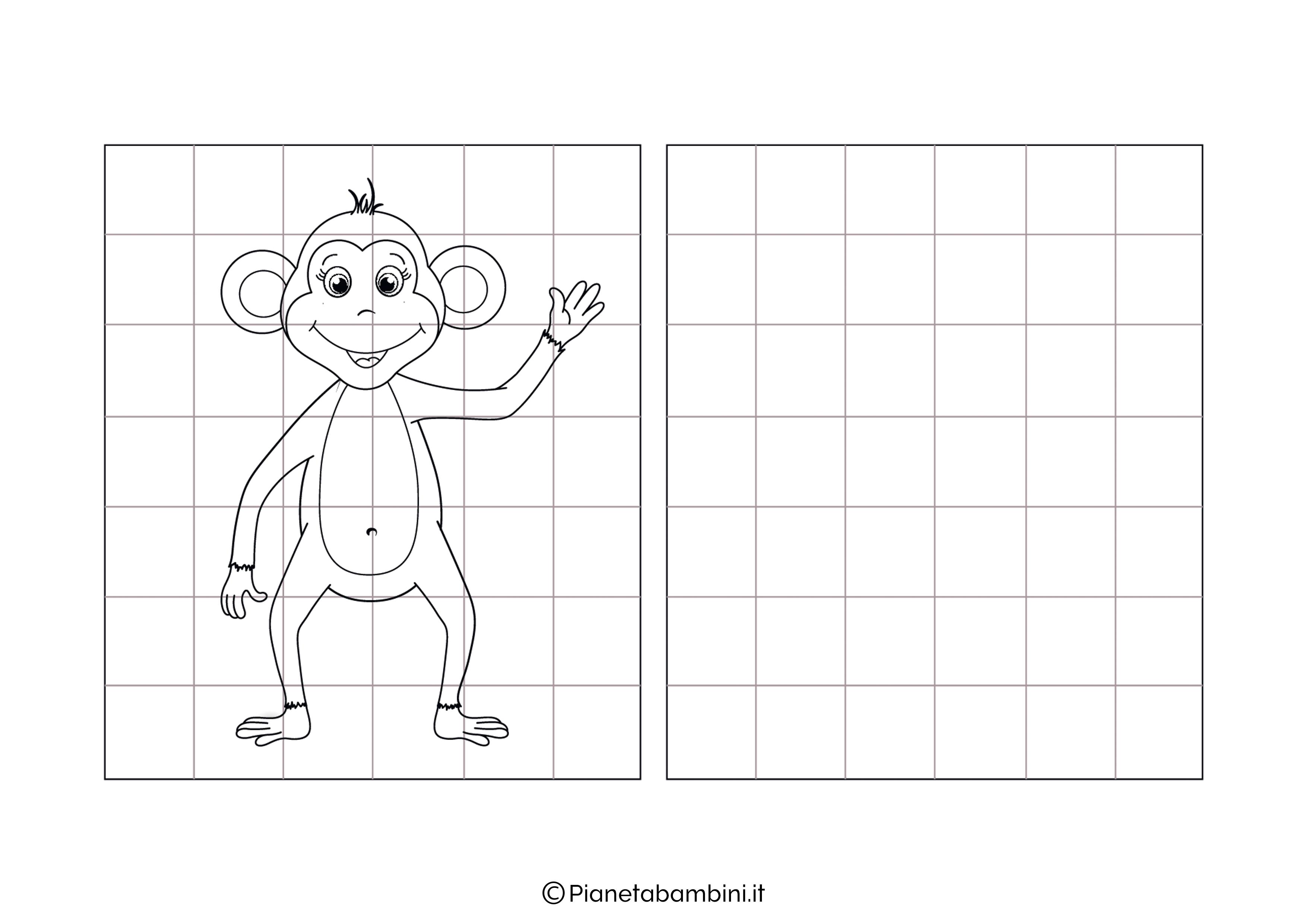 Scimmia da copiare
