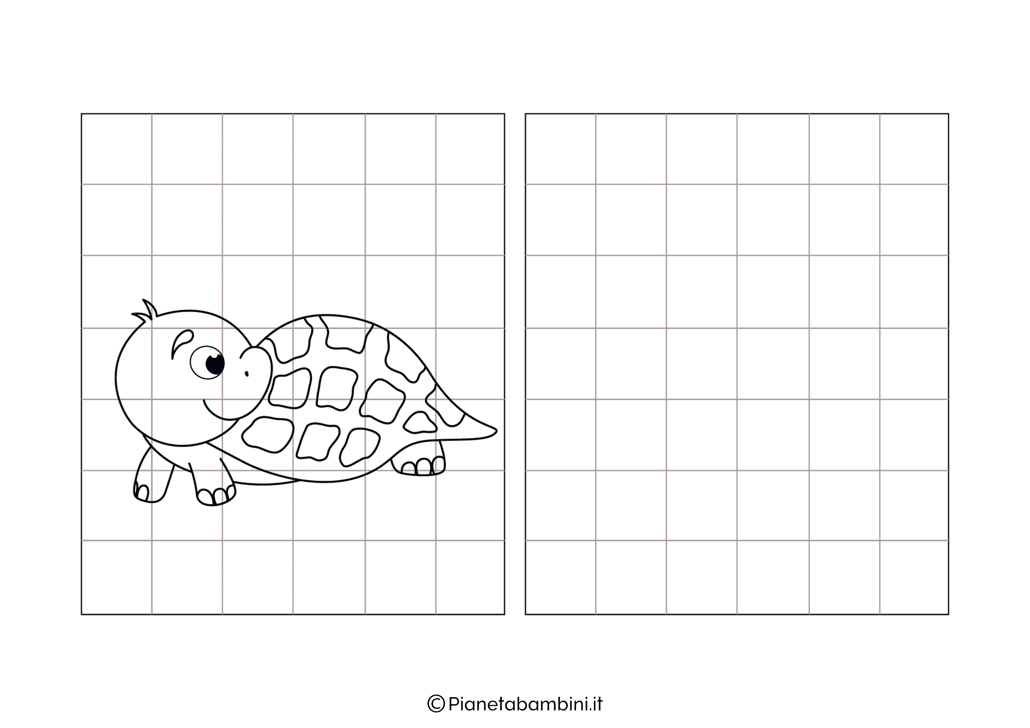 Tartaruga da copiare