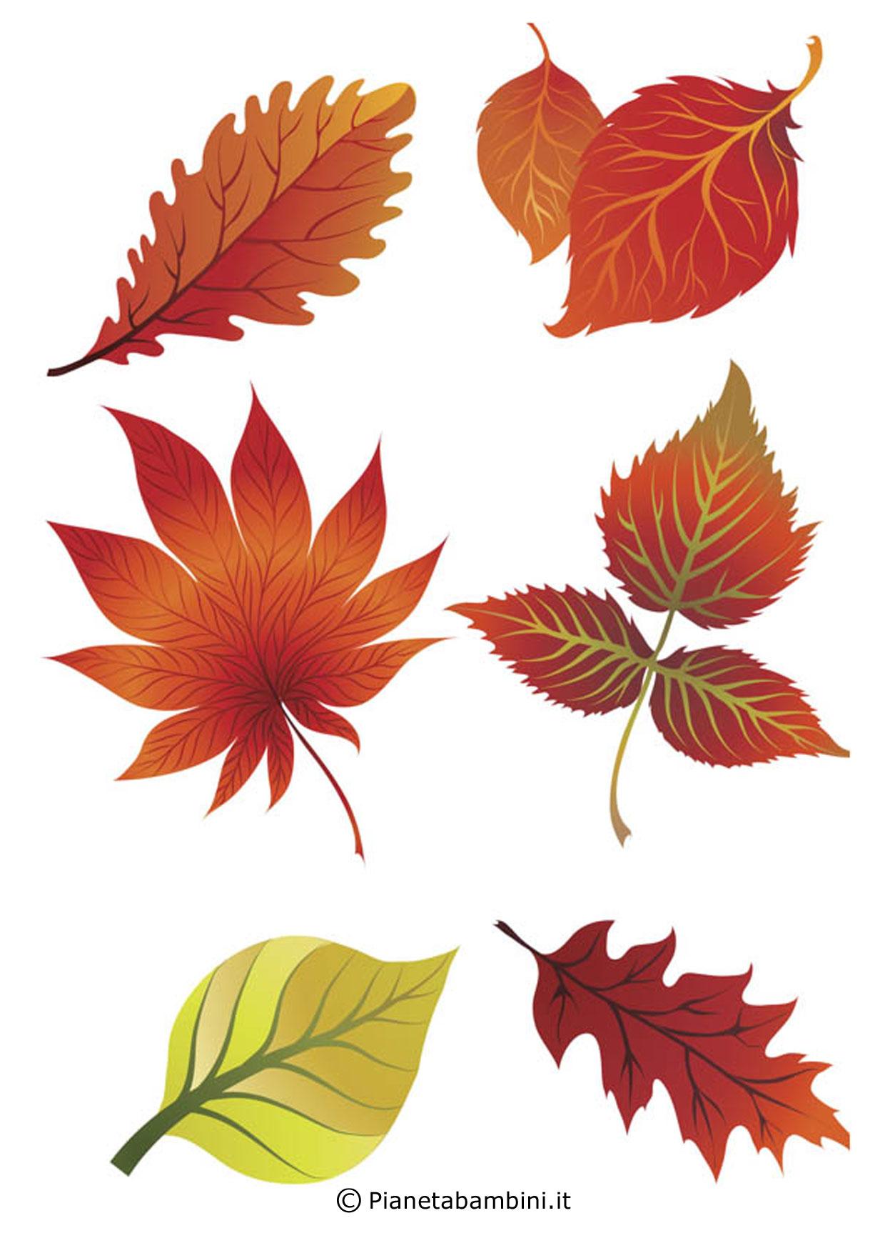 Frutta e foglie autunnali da ritagliare per lavoretti