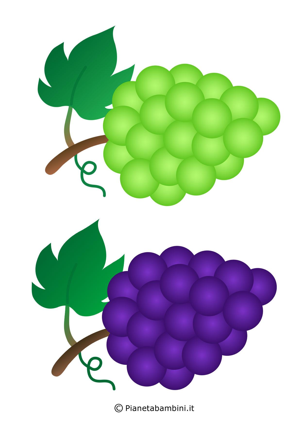 Frutta-Autunnale-Ritagliare_05
