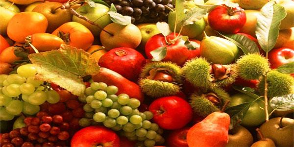 Disegni da colorare di frutta e foglie autunnali