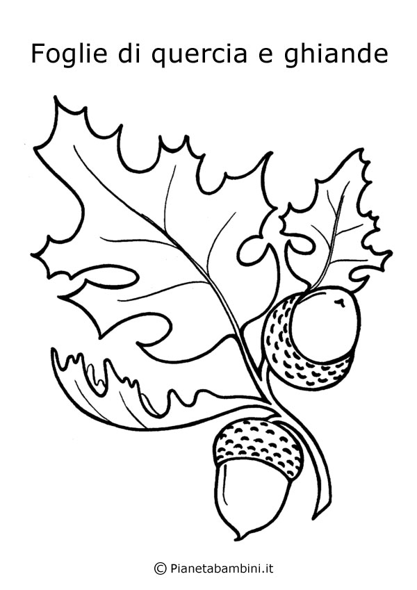 Free coloring pages of objetos q empiecen con e for Alligator gar coloring page