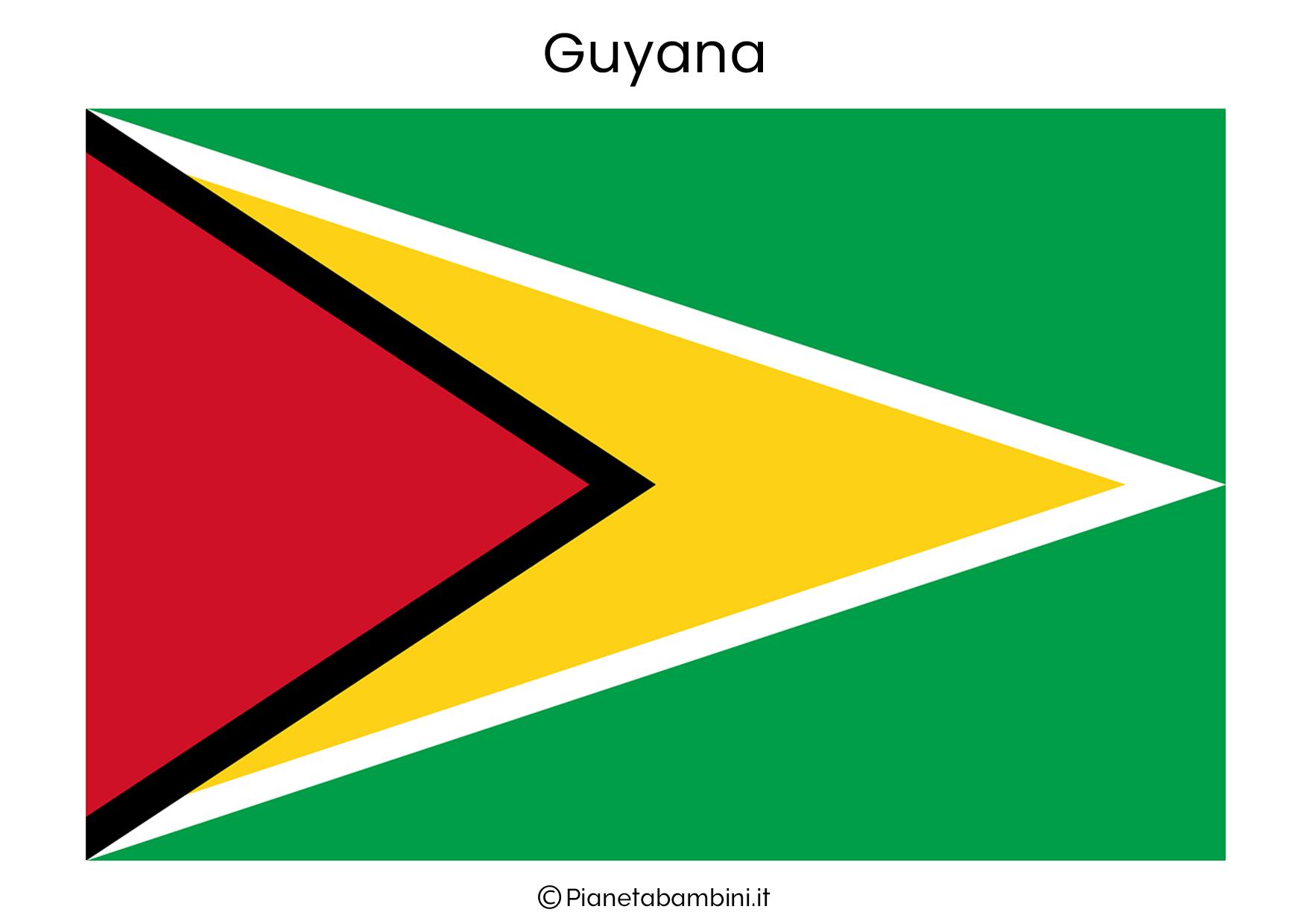 Bandiera della Guyana da stampare