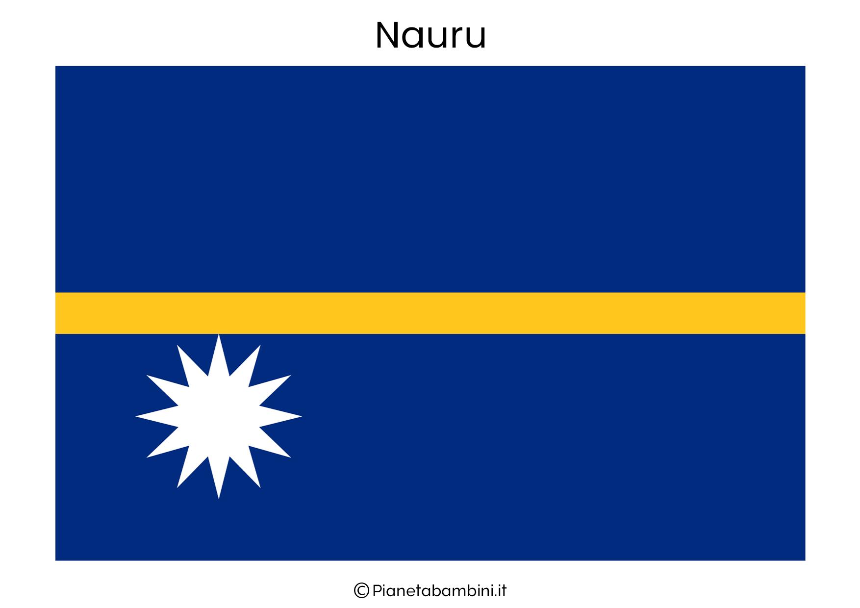 Bandiera di Nauru da stampare