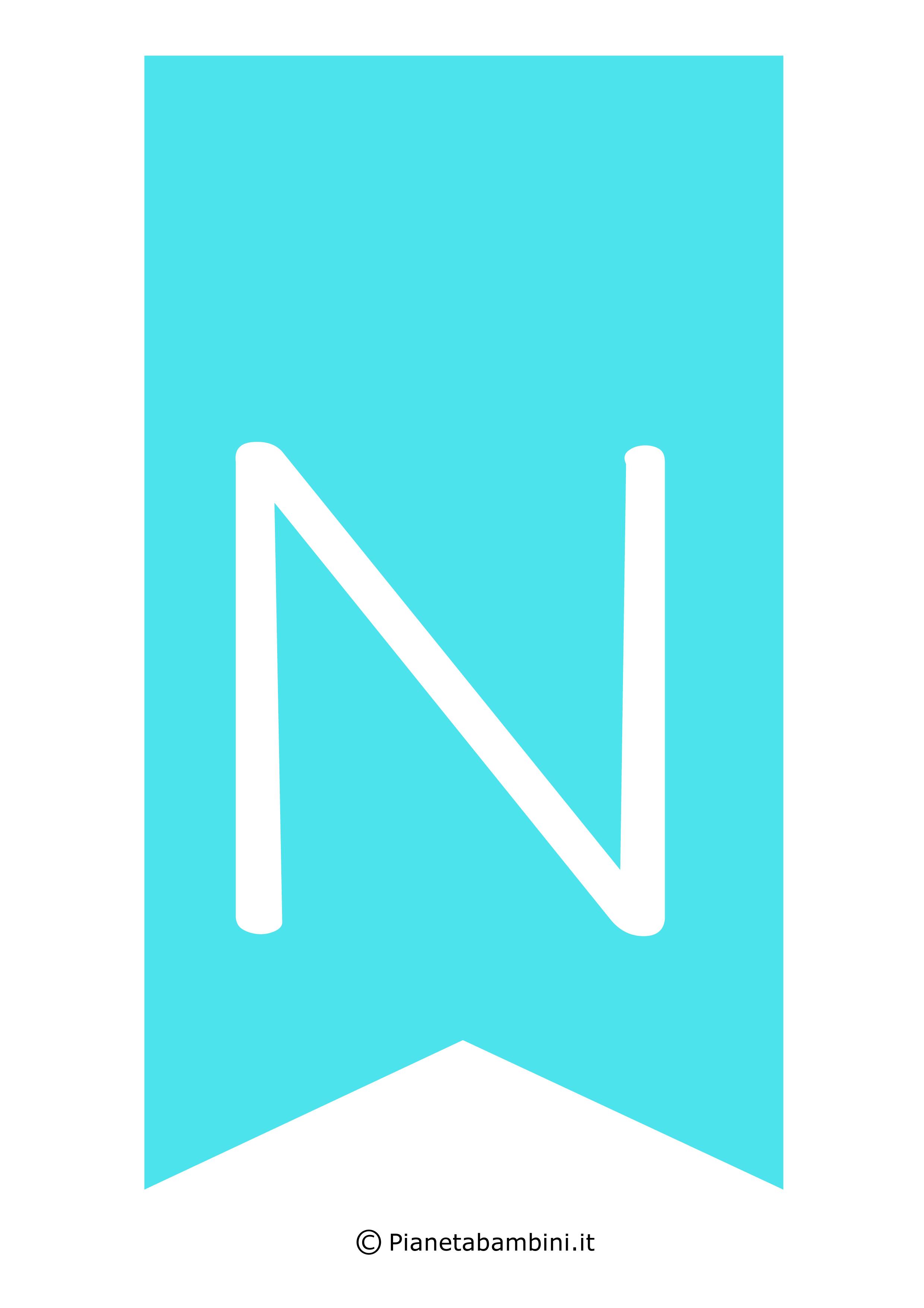 Bandiera_N_2