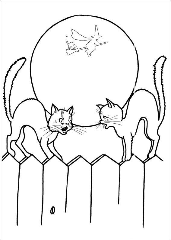 Due gatti si incontrano