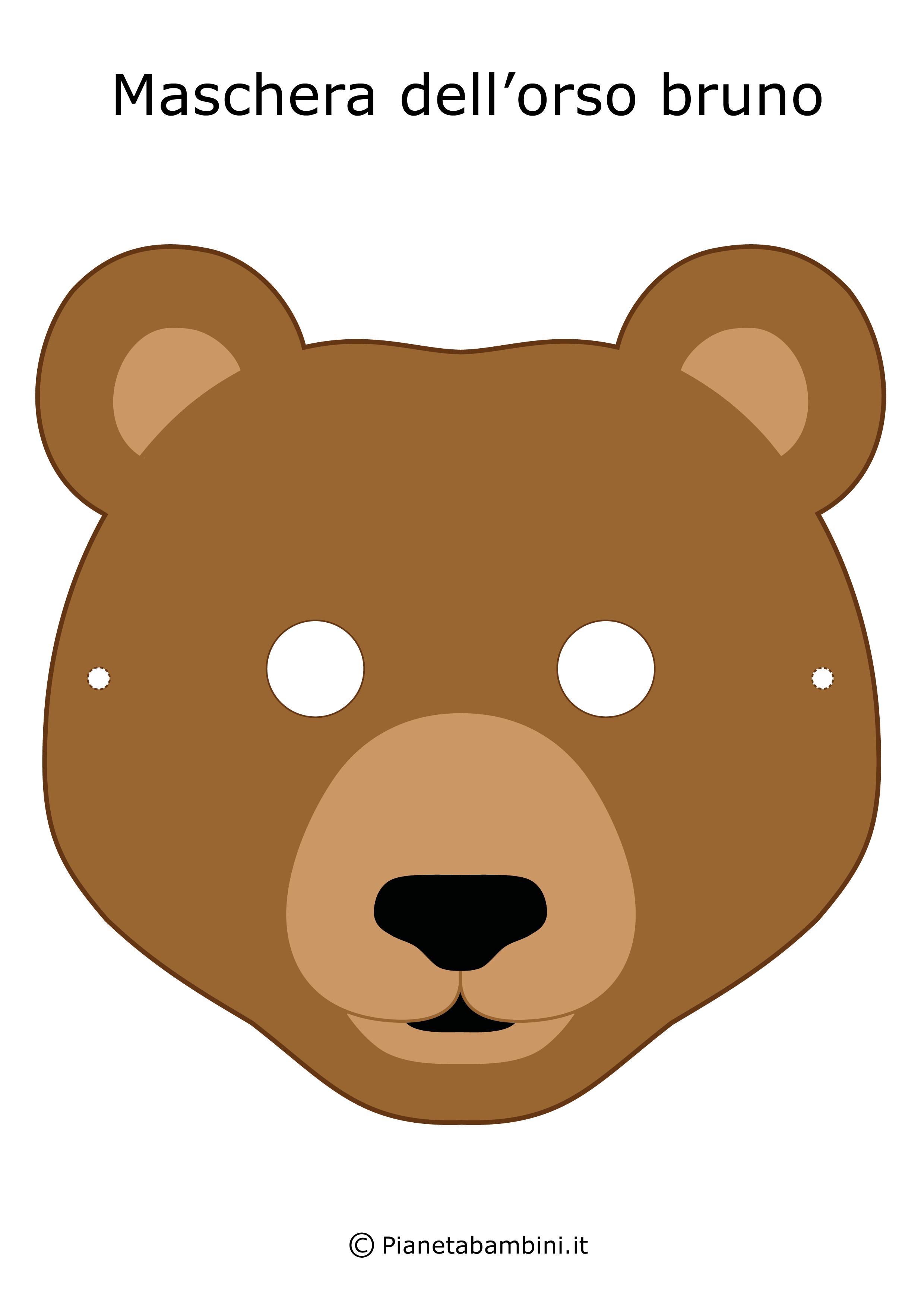 Immagine della maschera dell'orso bruno