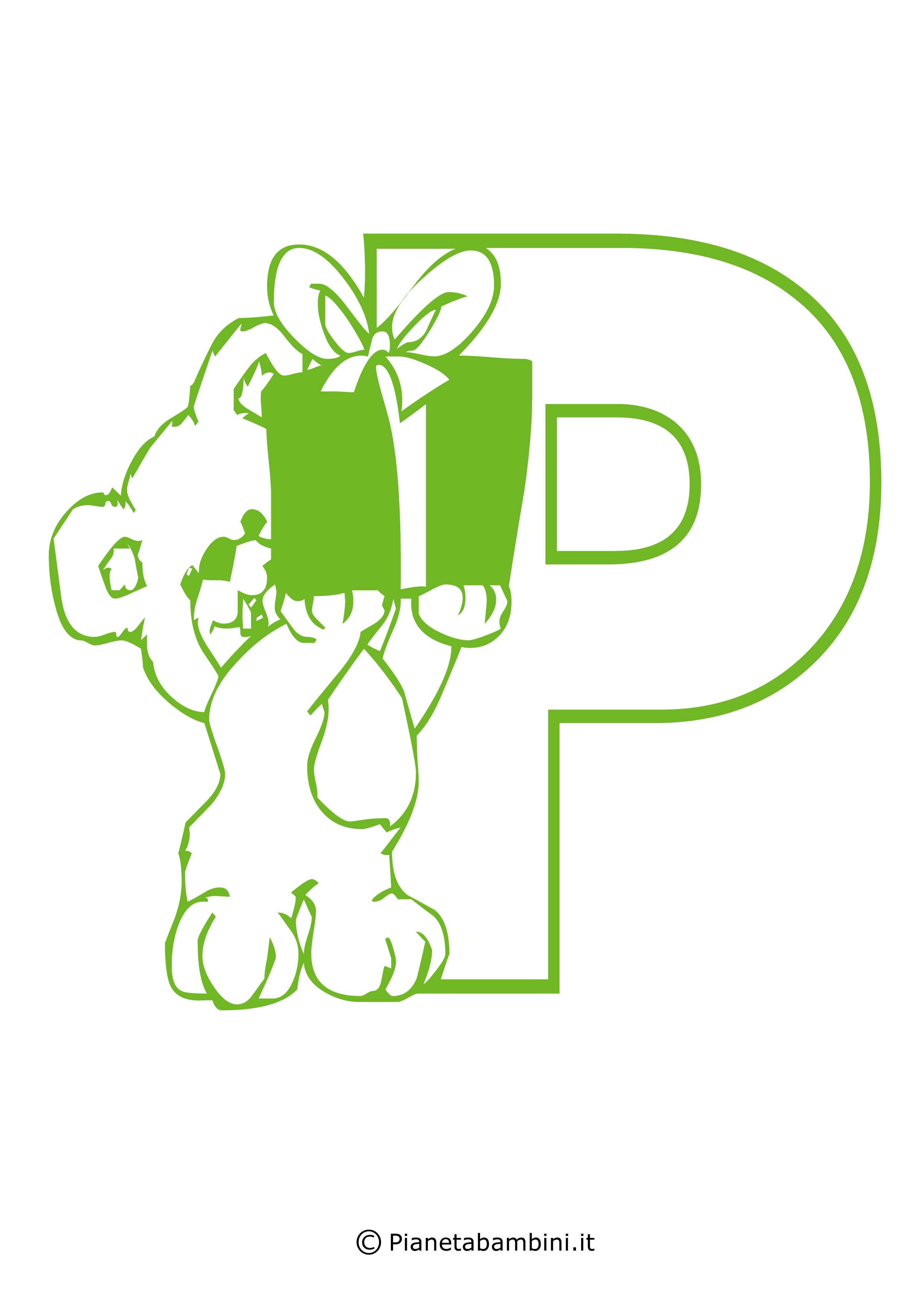 Orsacchiotto-P