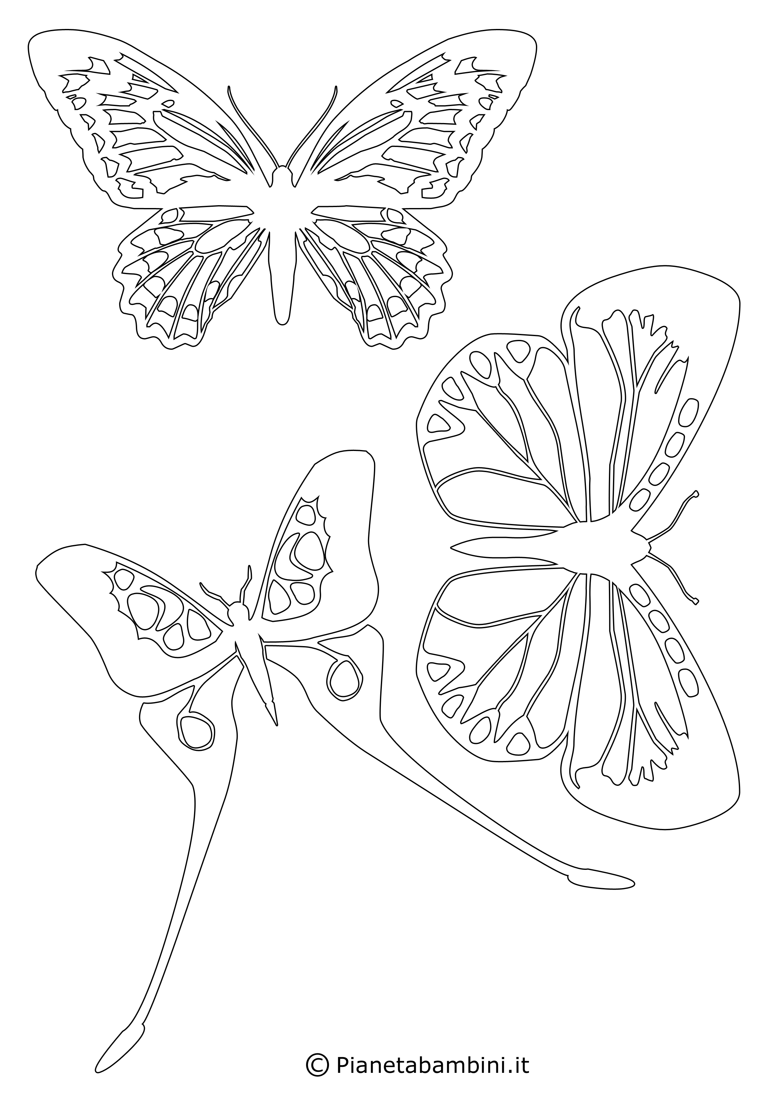 Sagome-Farfalle_03