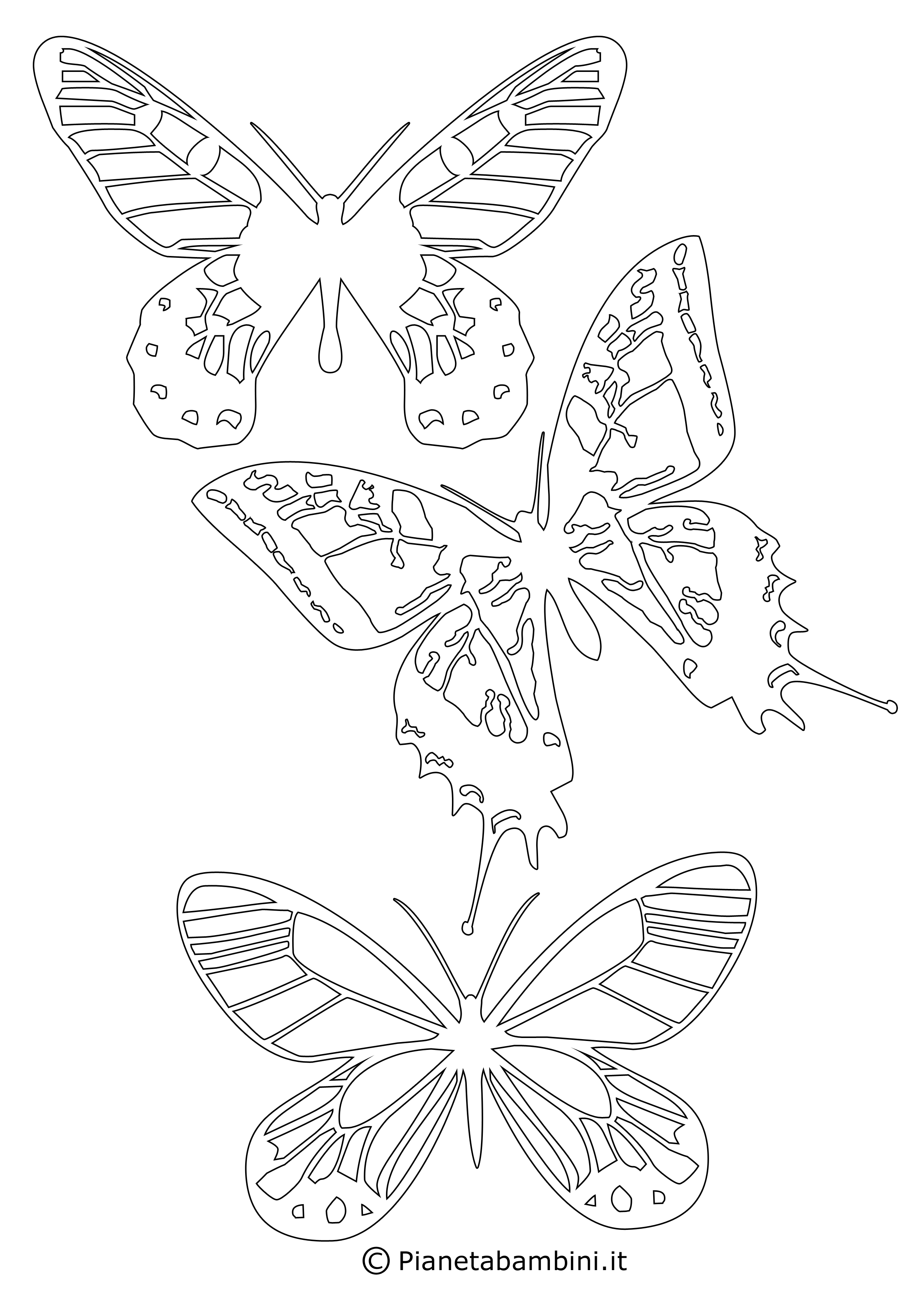 Sagome-Farfalle_10