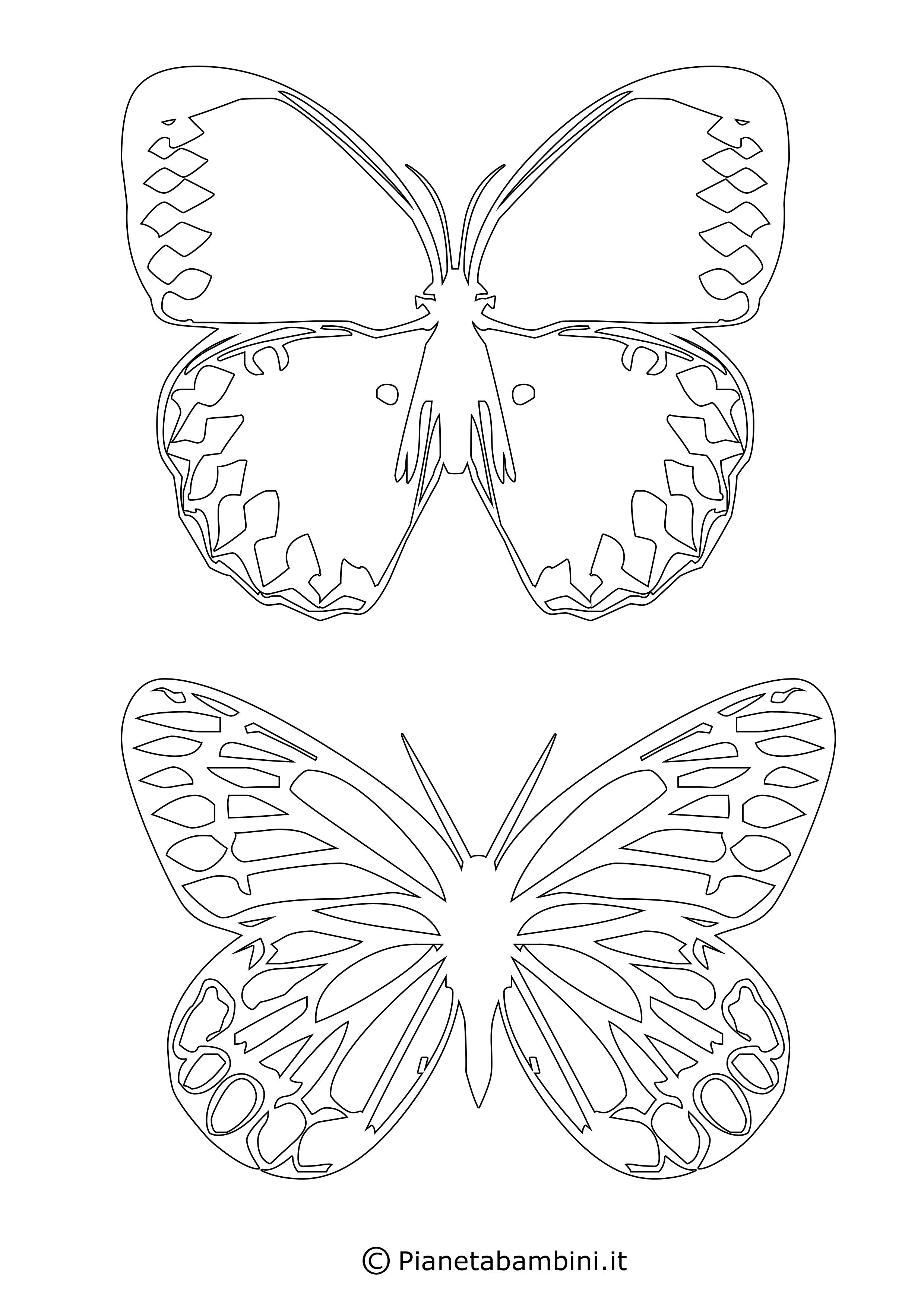 Sagome-Farfalle_15