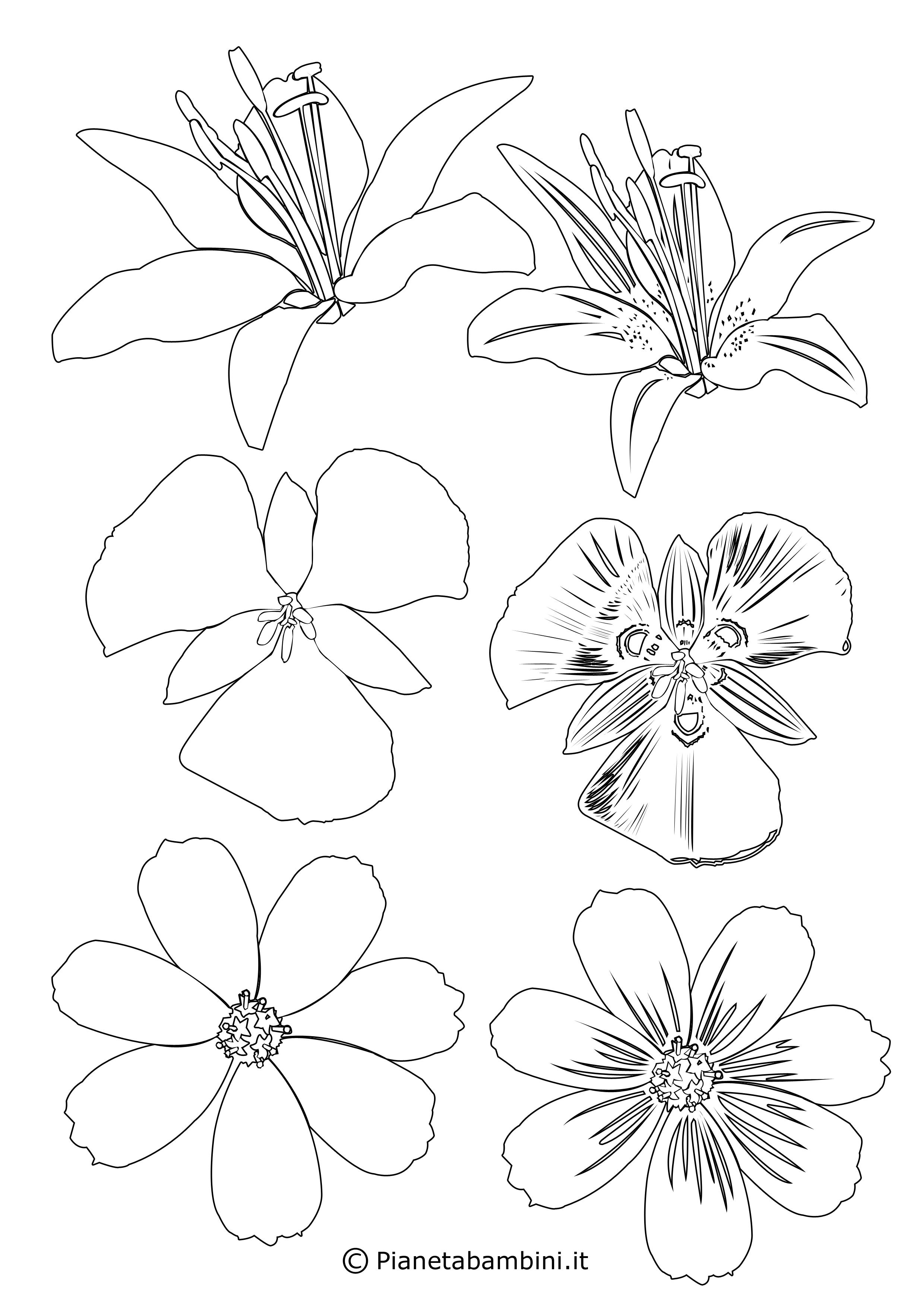 Sagome di fiori piccoli 9