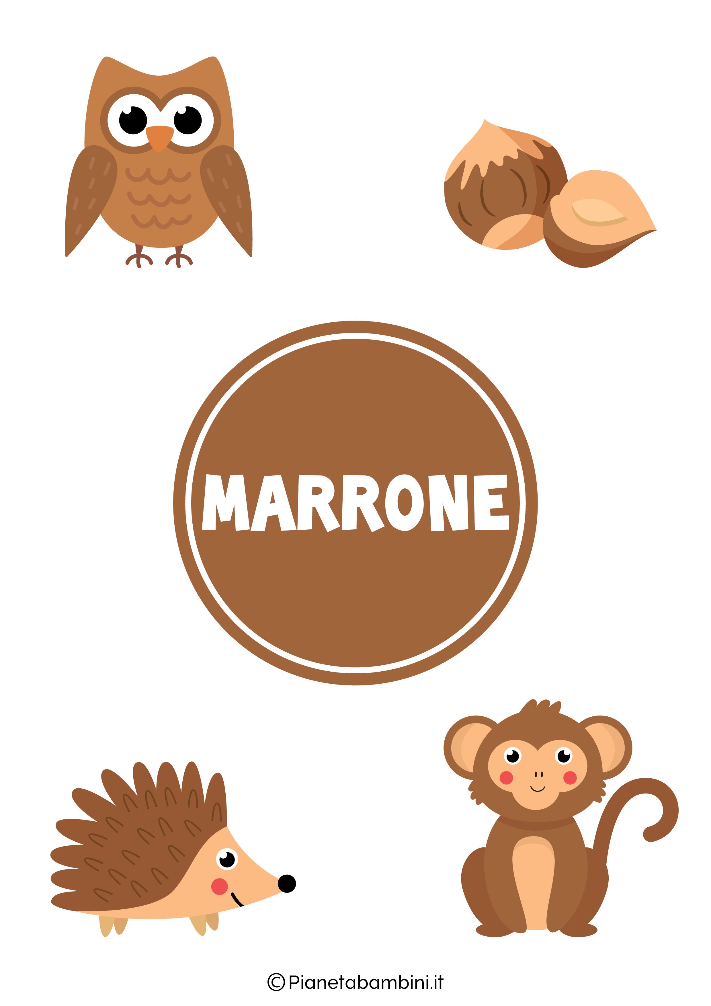 Flashcard sul colore marrone