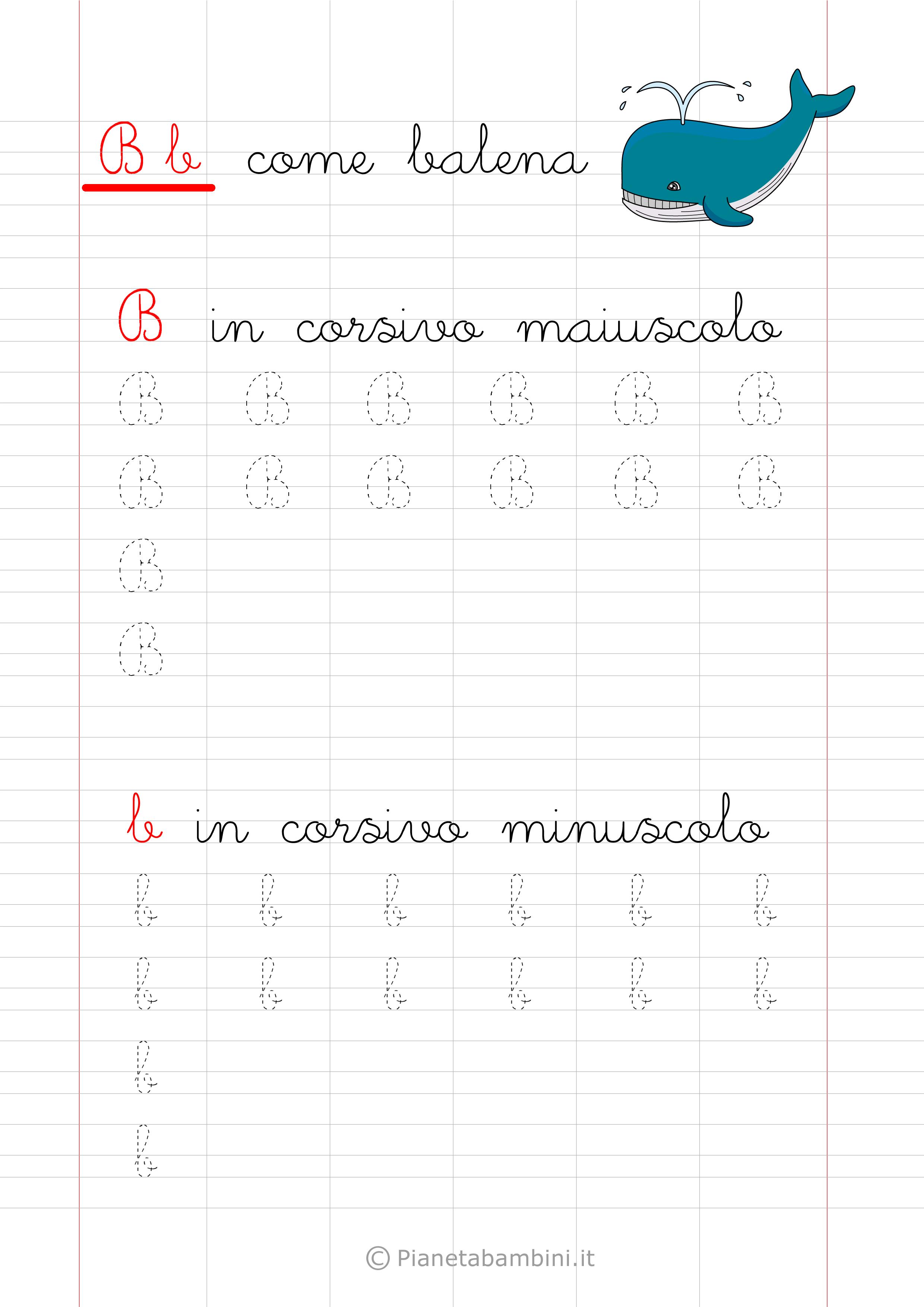 Scheda di pregrafismo lettera B in corsivo