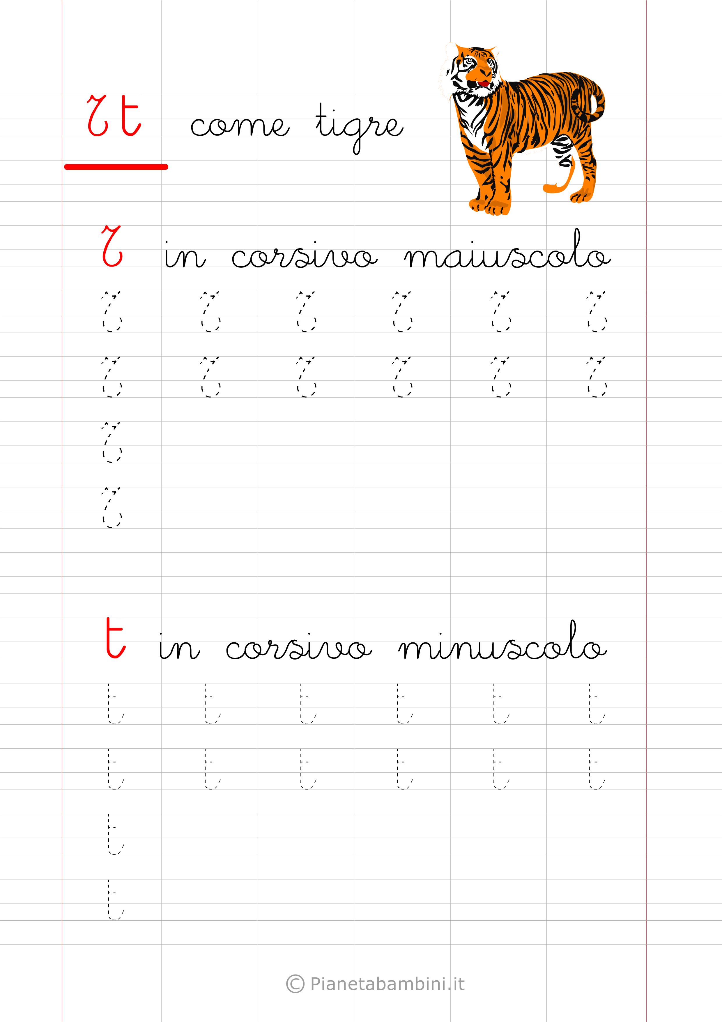 Scheda di pregrafismo lettera T in corsivo