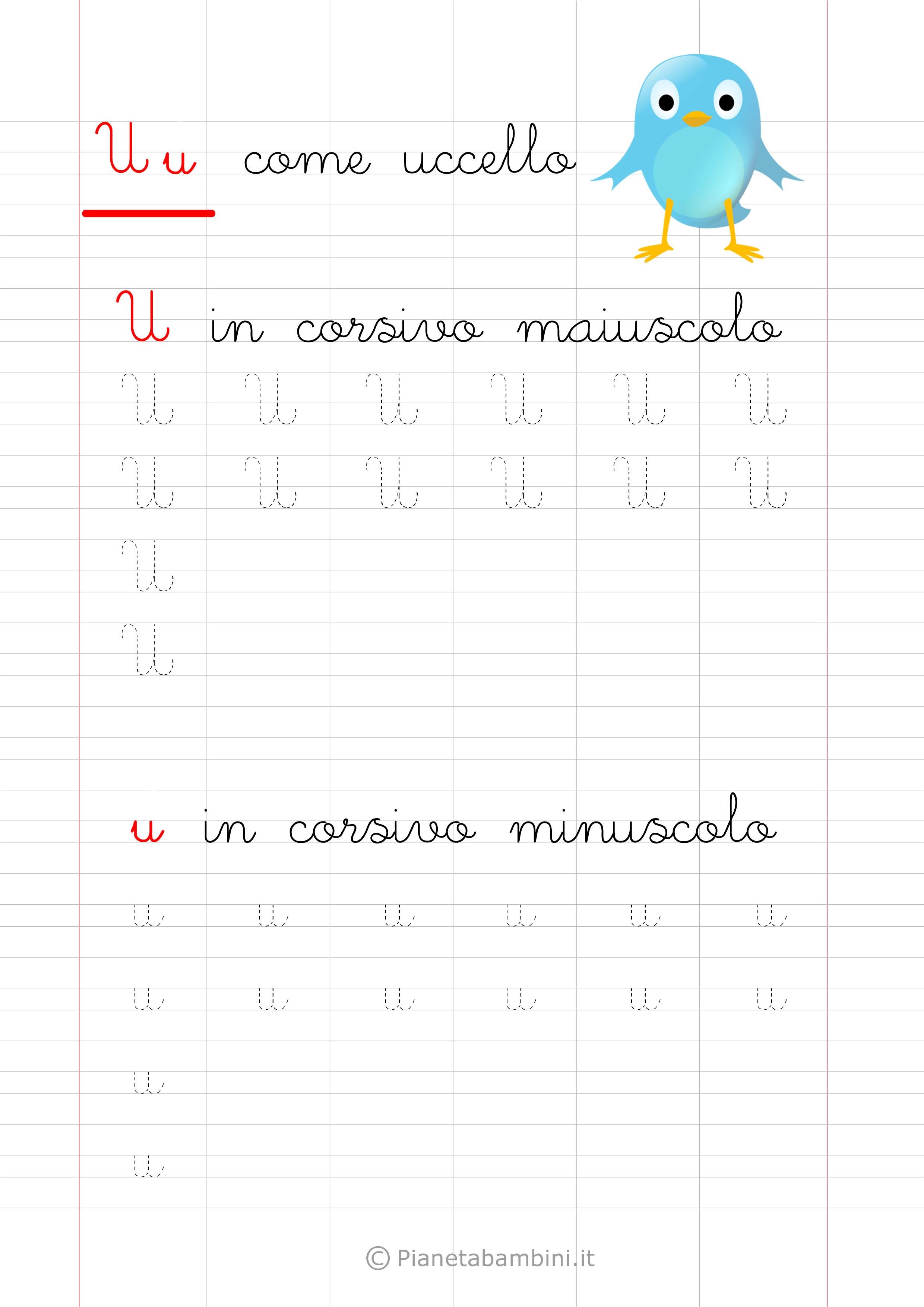 Scheda di pregrafismo lettera U in corsivo