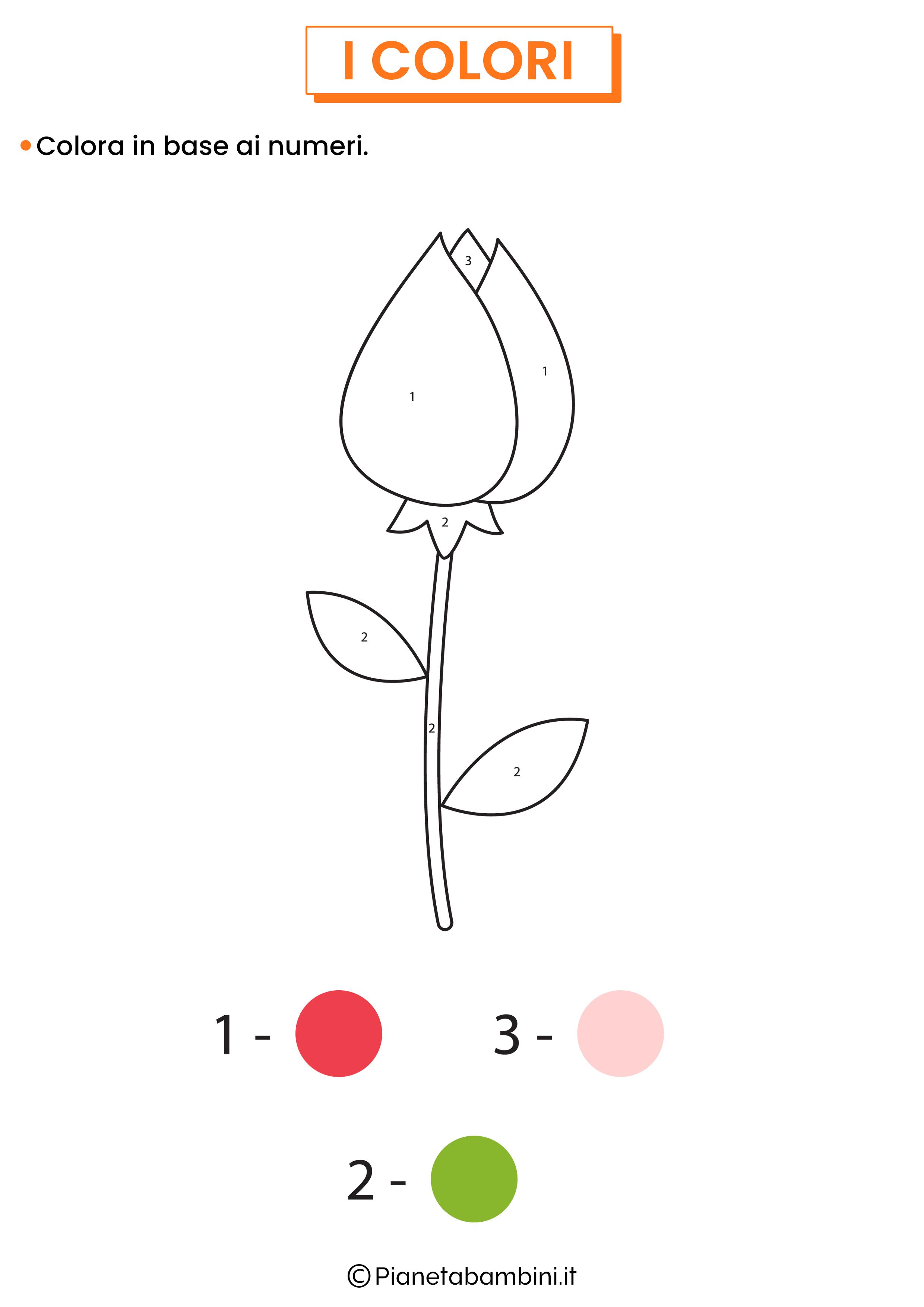 Colora in base ai numeri 1