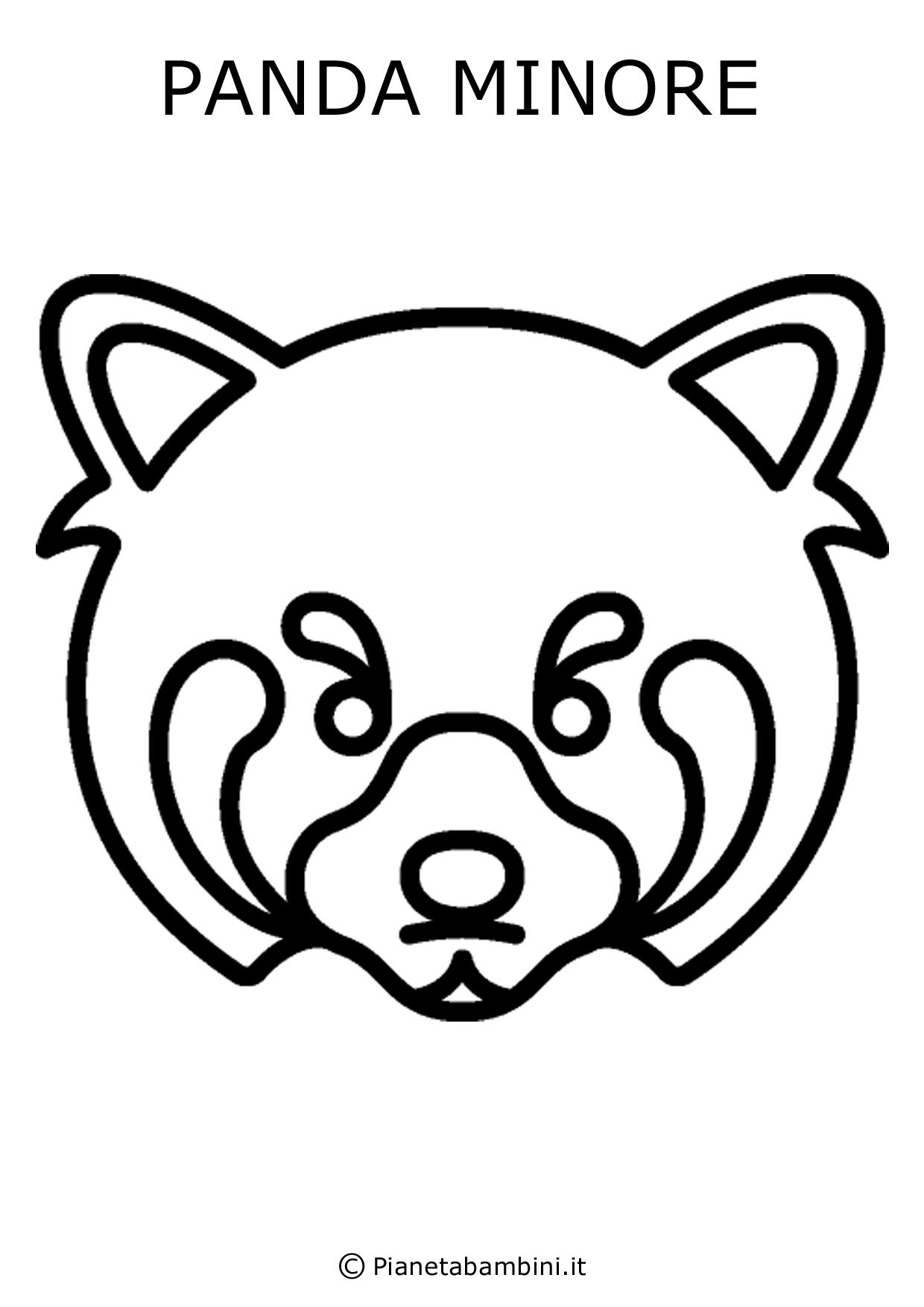 Panda-Minore