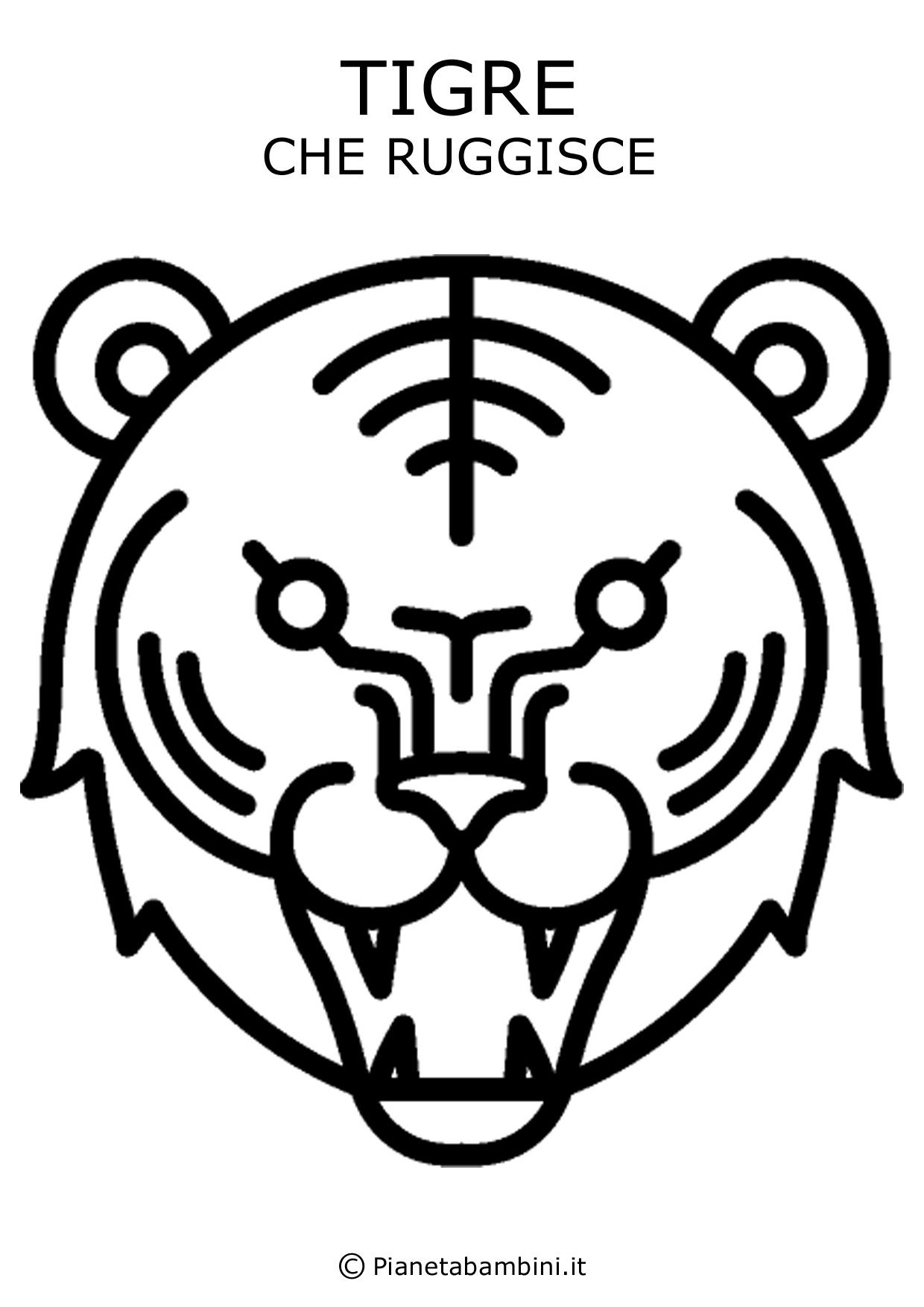 Tigre-Ruggisce