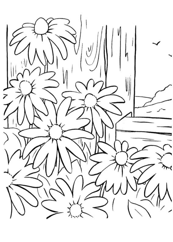 60 disegni di primavera da colorare per bambini for Disegni di girasoli da colorare