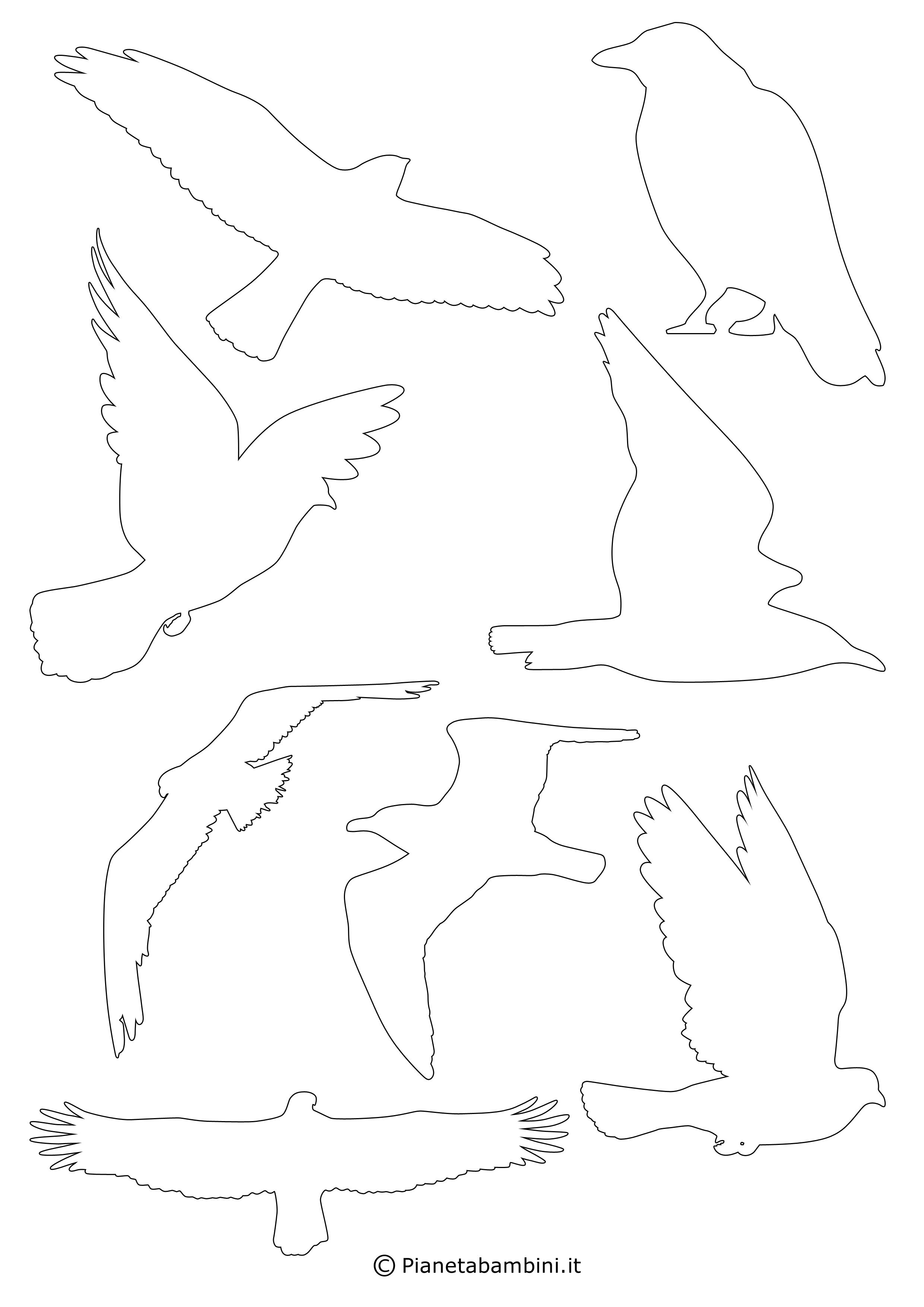 Sagome-Uccelli-06