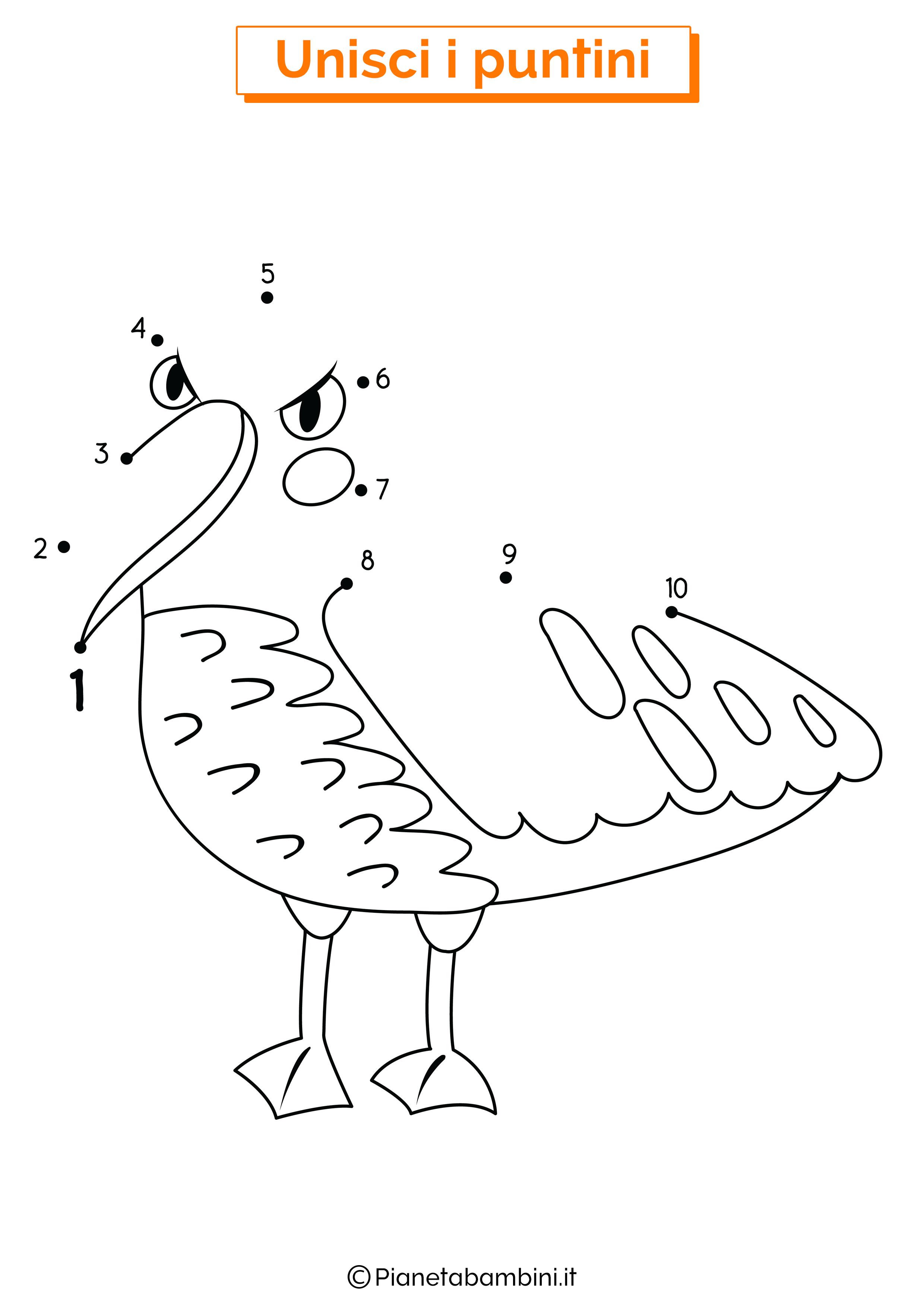 Disegno unisci i puntini da 1 a 10 albatros