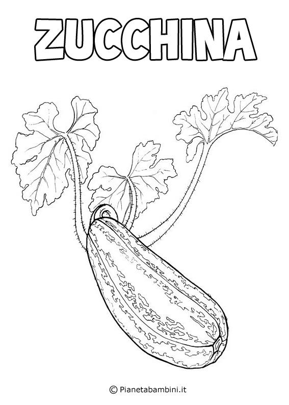 Zucchina da colorare