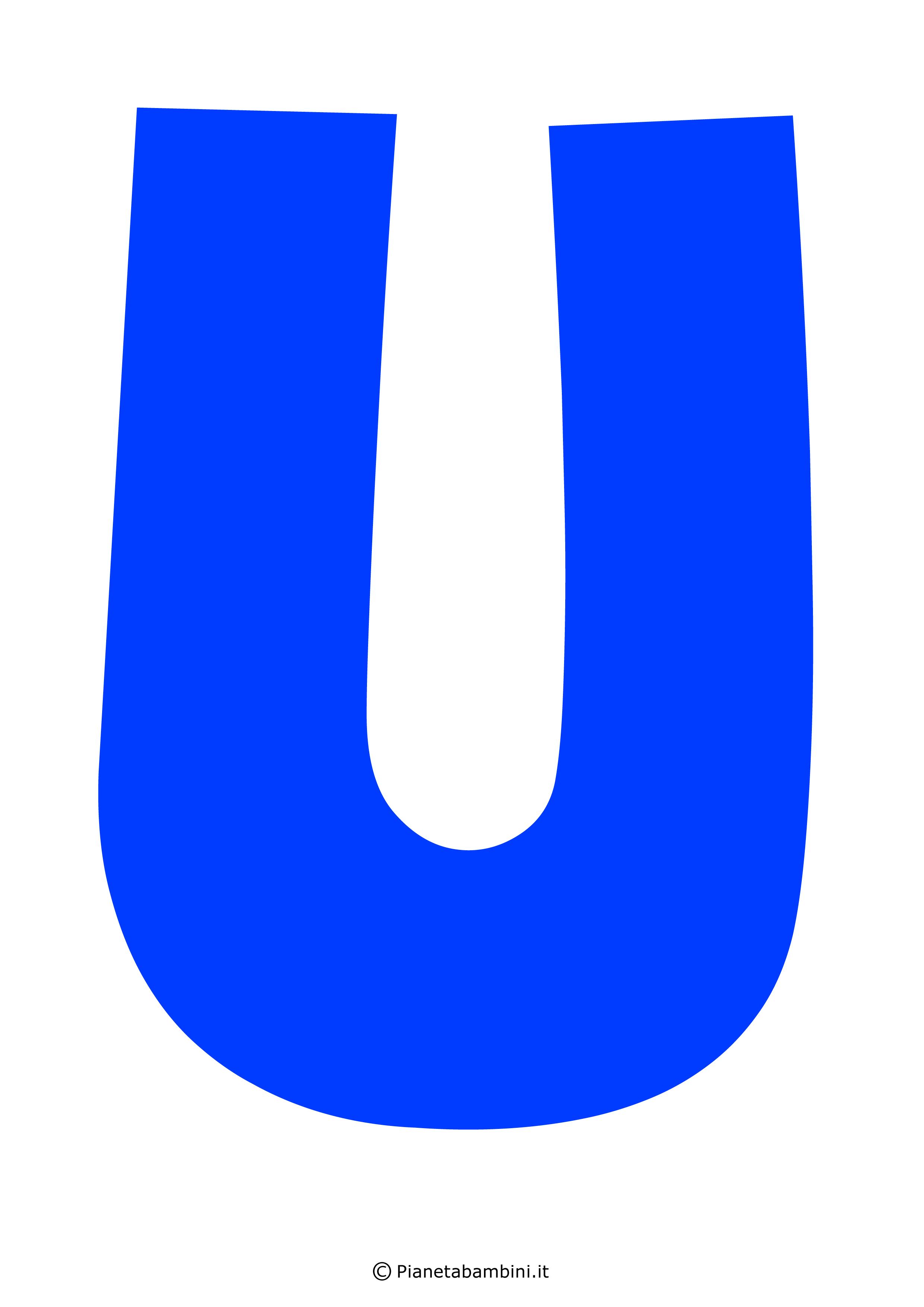 Lettera-U-Blu