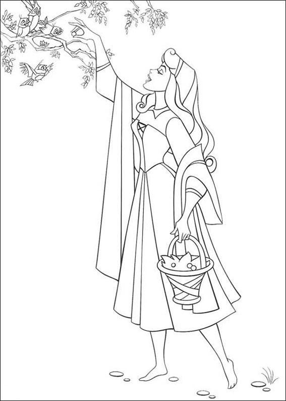 Principessa-Aurora_16
