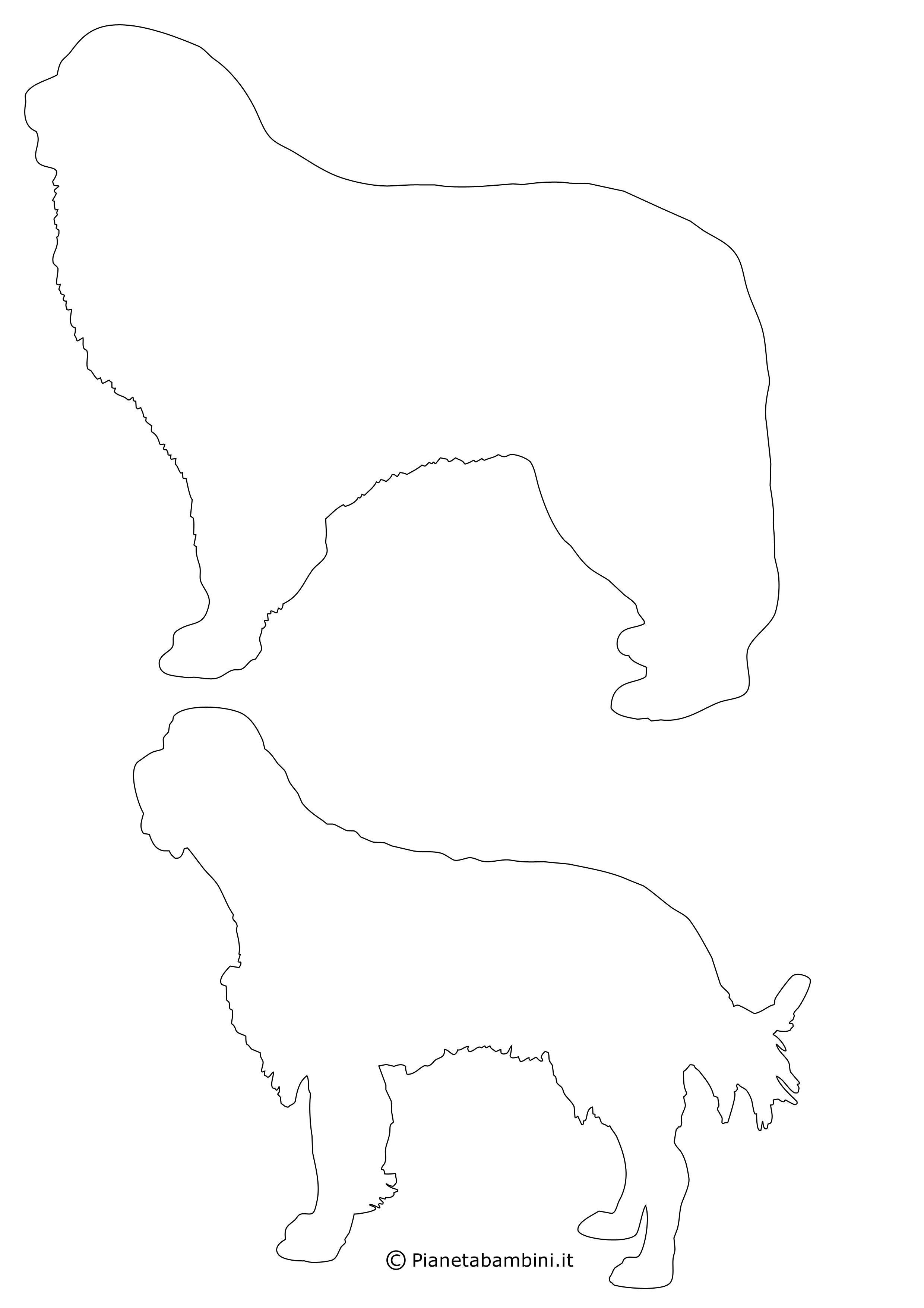 Sagome-Cani-Medie_2