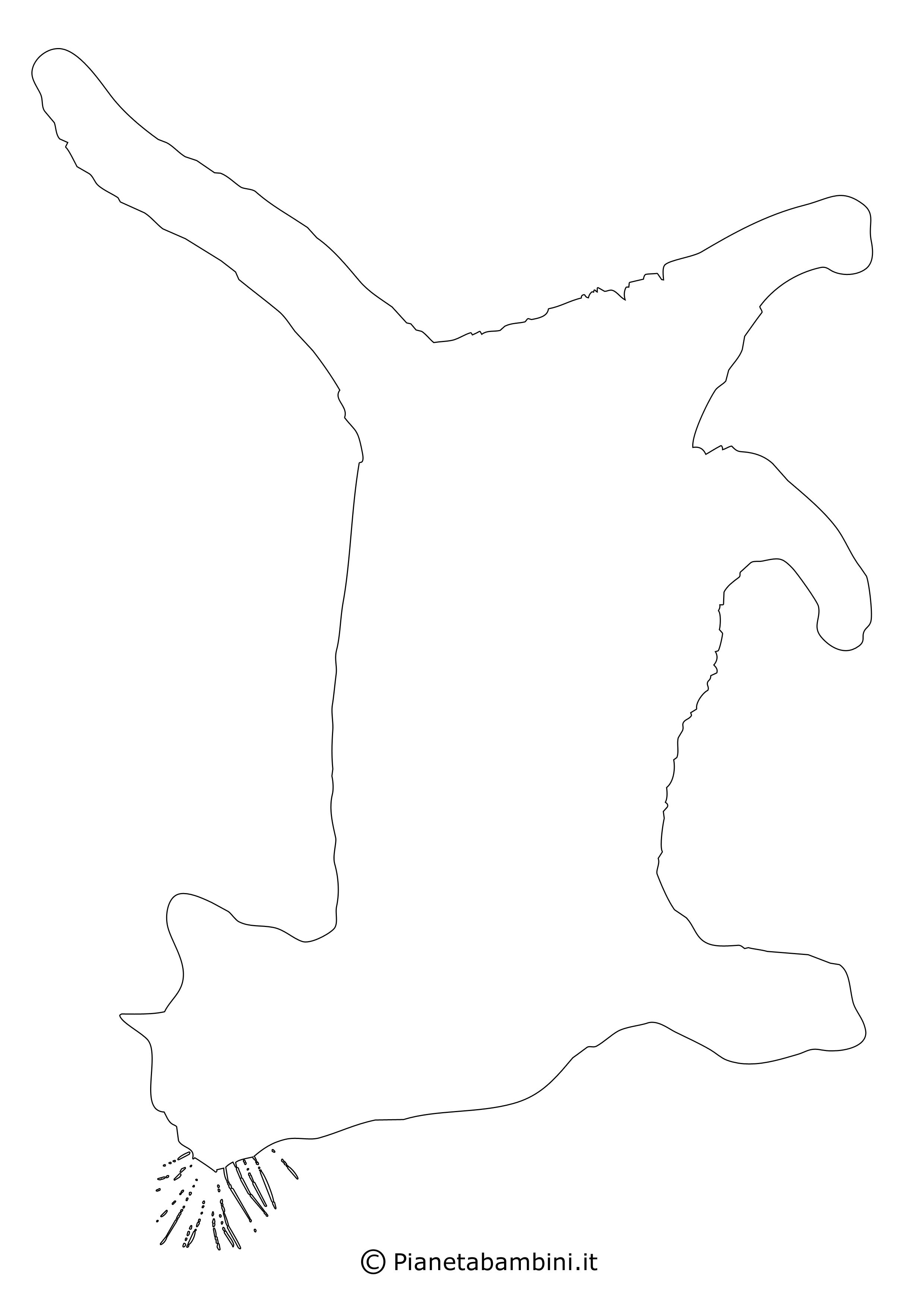 Sagome-Gatti-Grandi-1