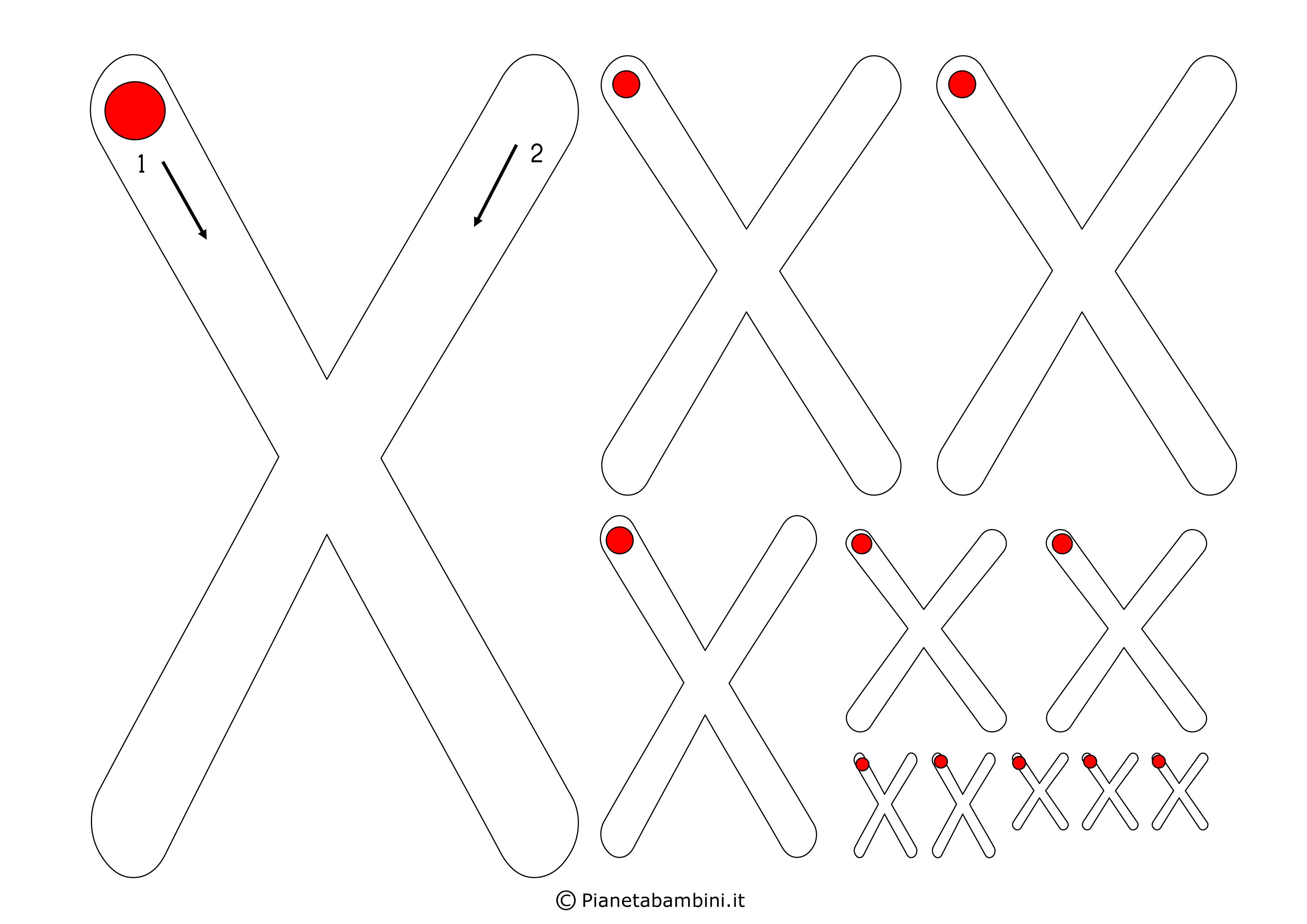 Scheda-Lettera-X