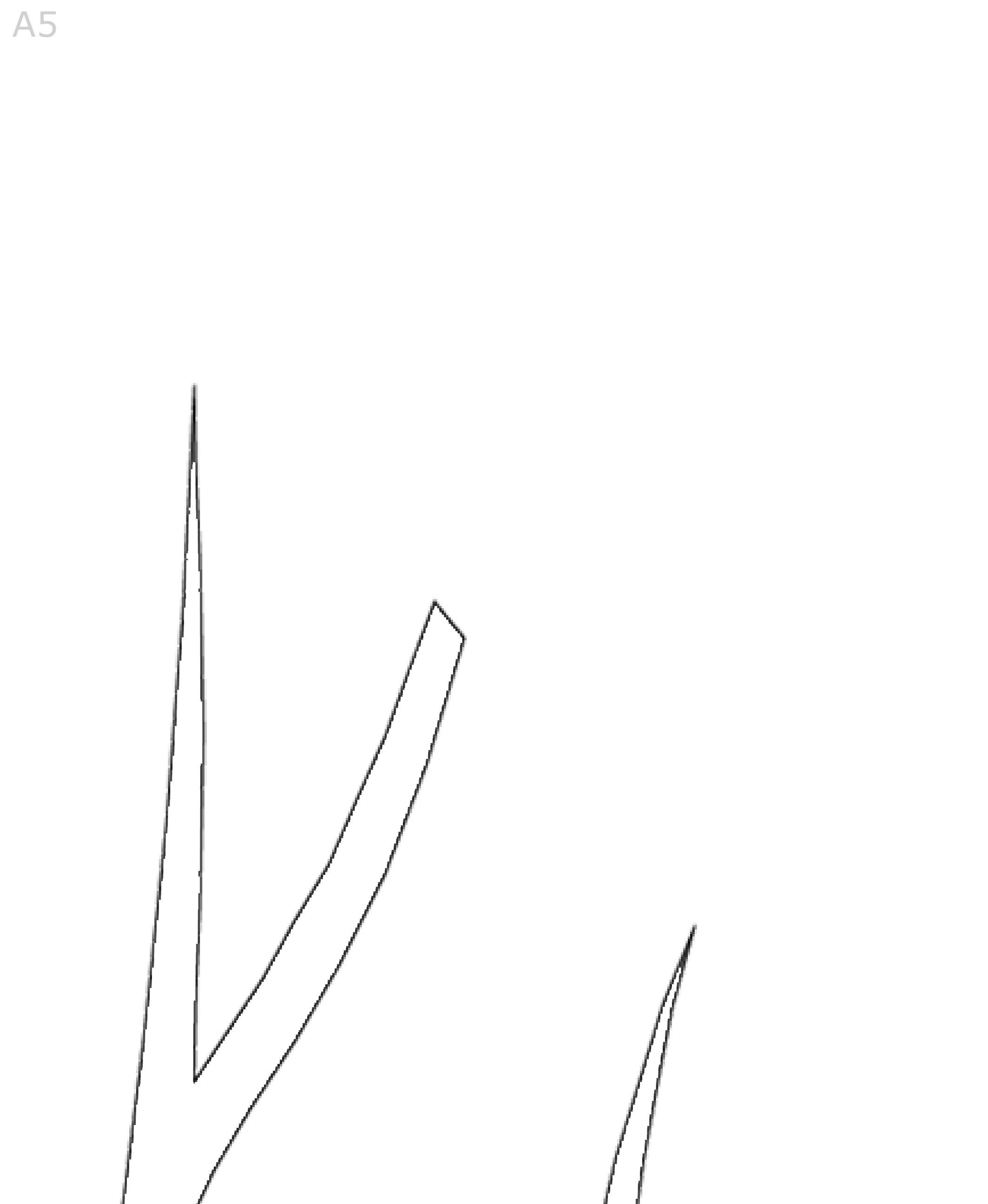 Albero-Autunno-BN-A-5