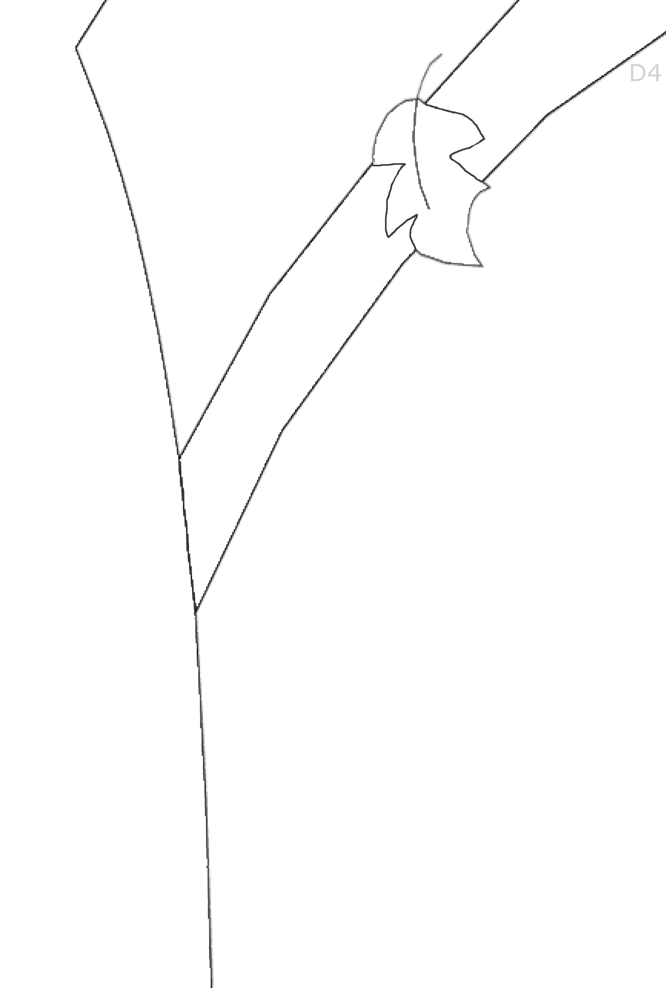 Albero-Autunno-BN-D-4