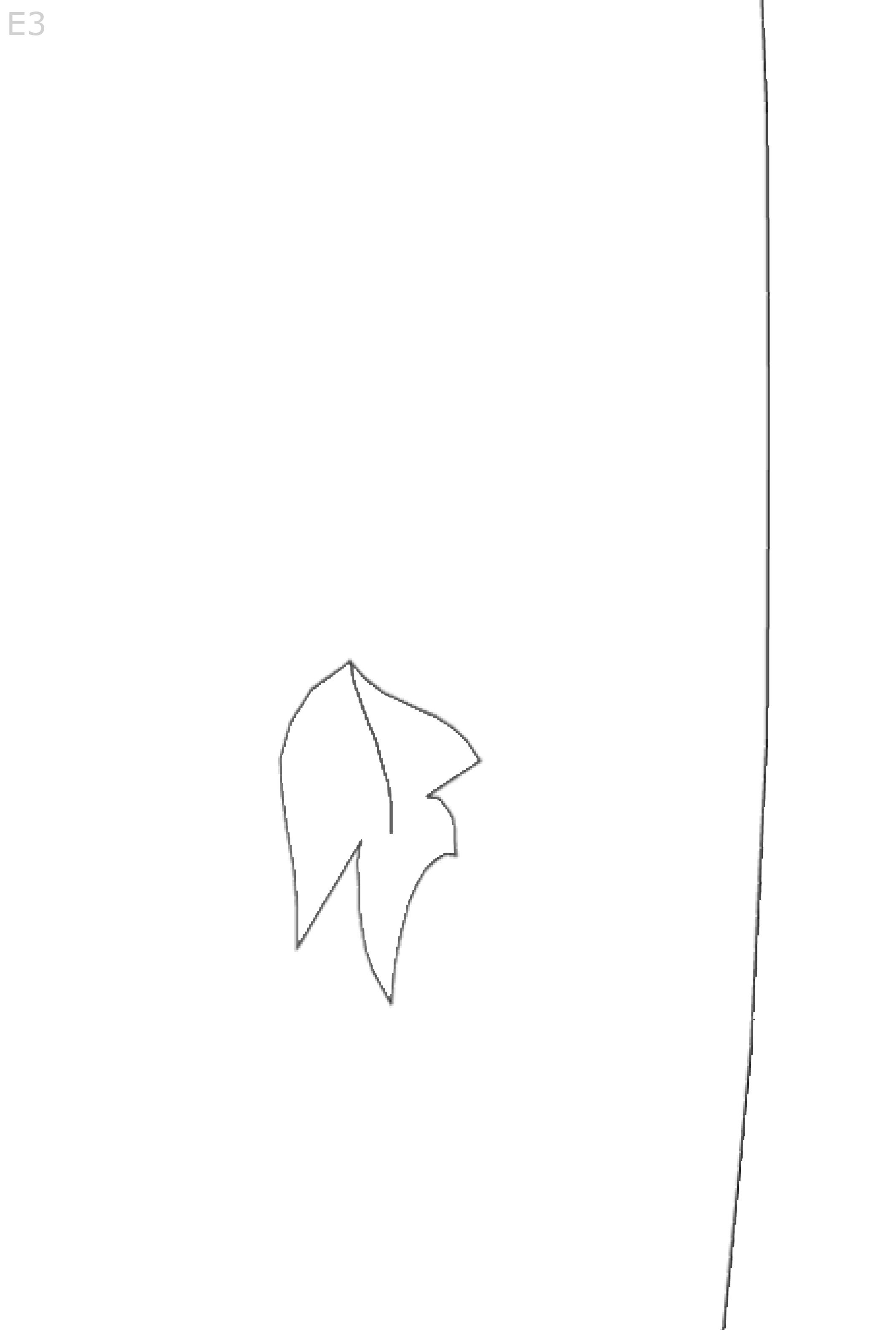 Albero-Autunno-BN-E-3