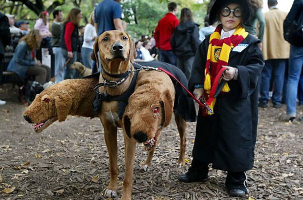 Costume di Halloween da Harry Potter e Fluffy