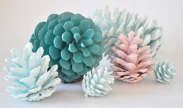 Le pigne colorate