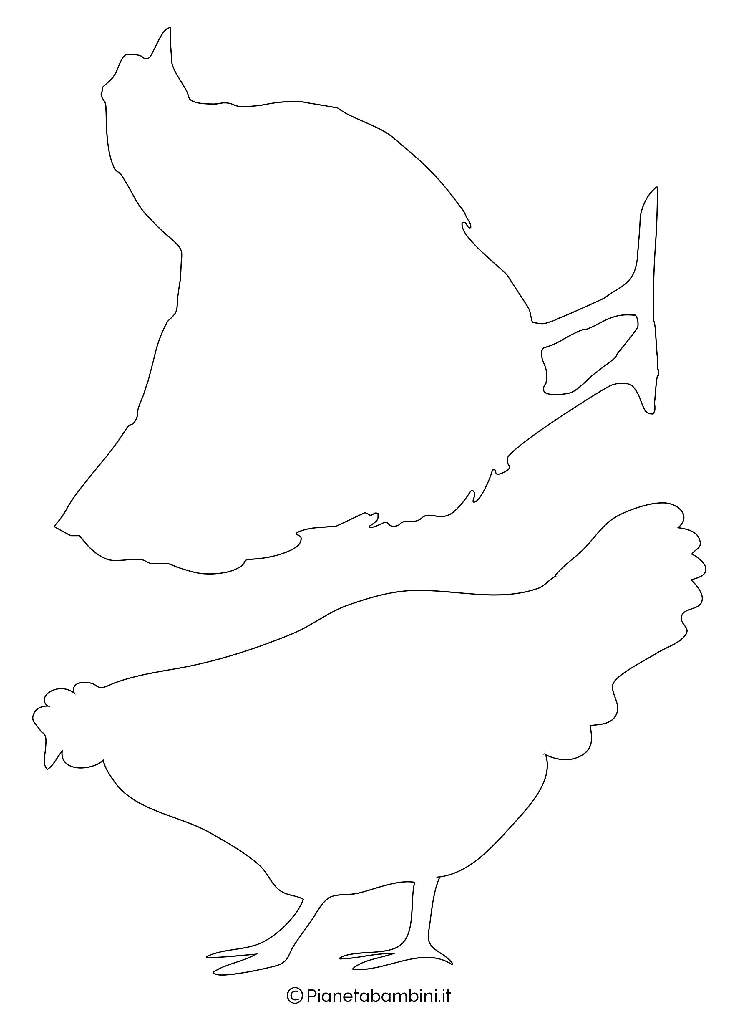 Sagome-Galline-Galli-Grandi-1