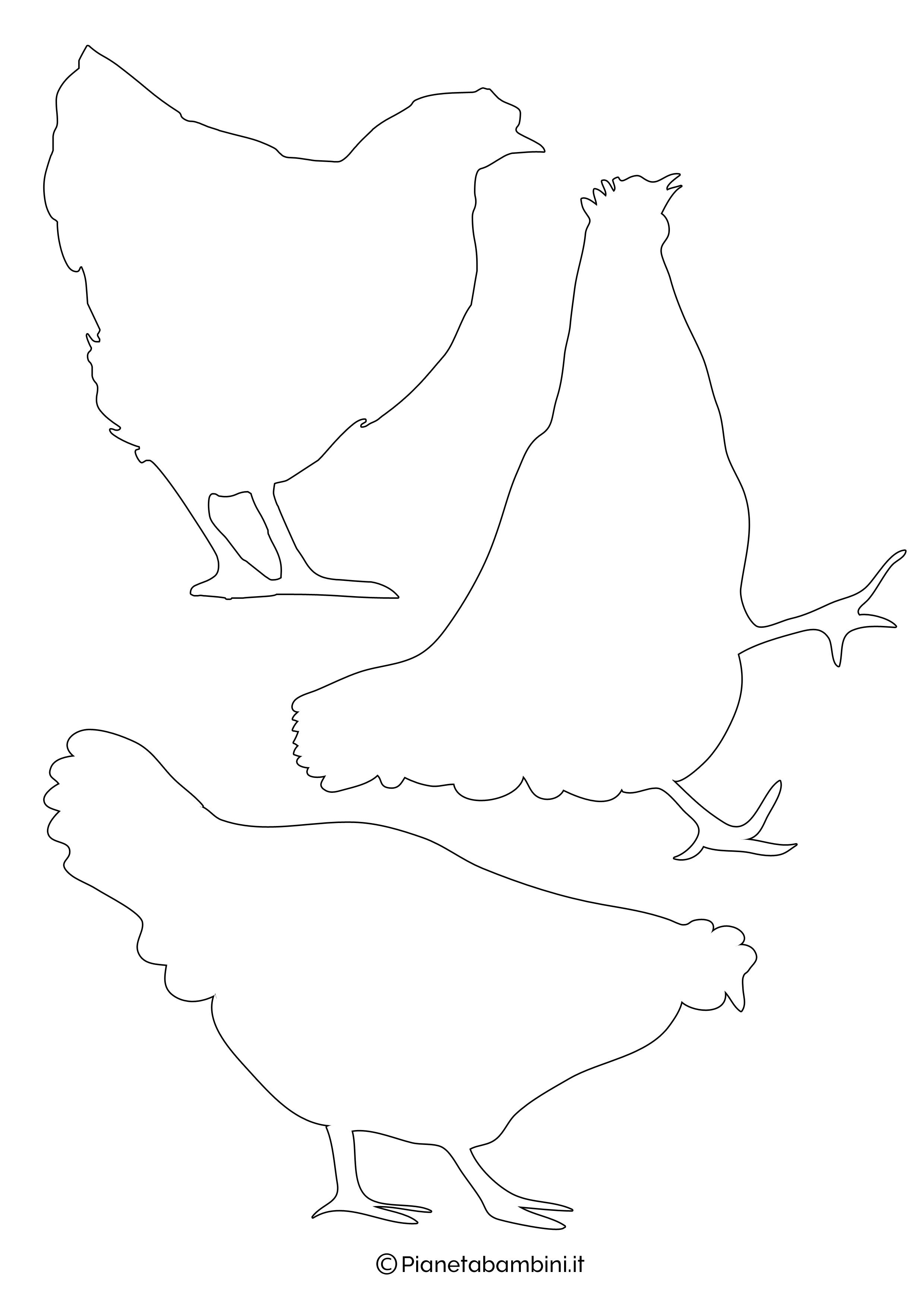 Sagome-Galline-Galli-Medie-1