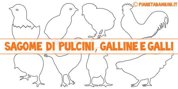 Sagome di pulcini galline e galli da stampare gratis